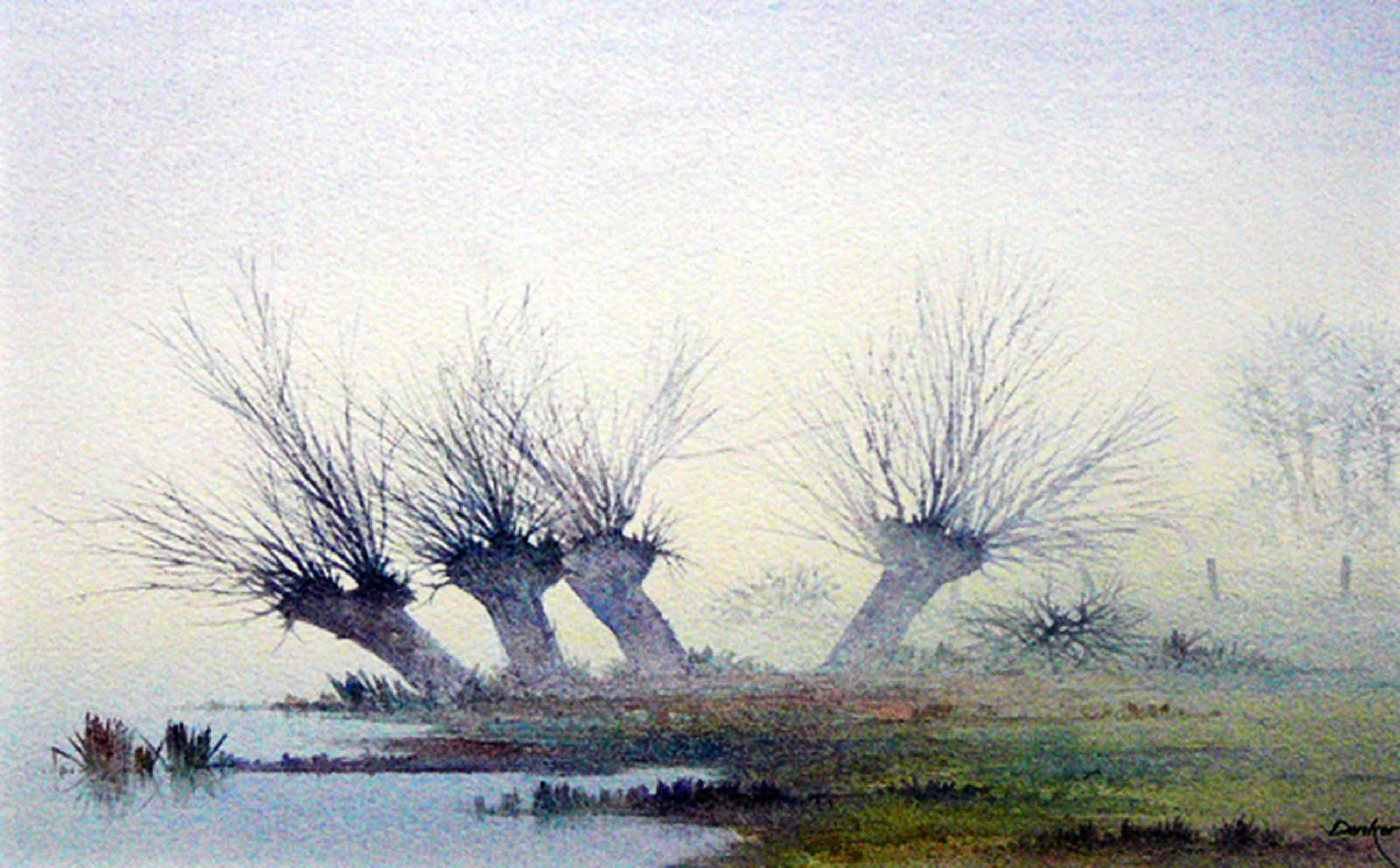 Denkor: Knotwilgen in rivierenlandschap -aquarel- kopen? Bied vanaf 65!