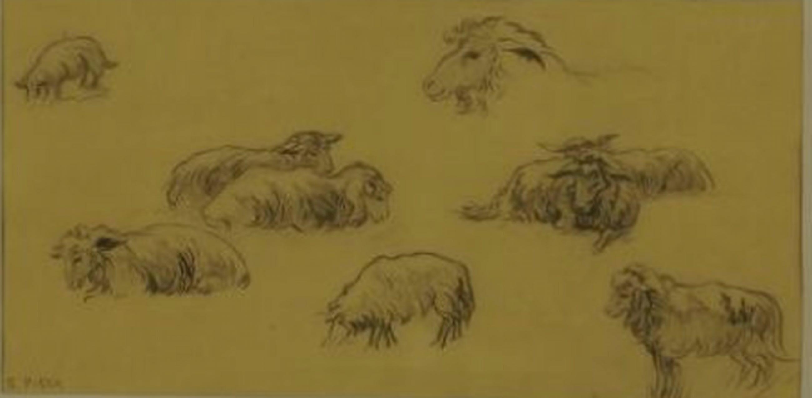 Gretha Pieck (1898-1920), tekening, studie van schapen kopen? Bied vanaf 125!