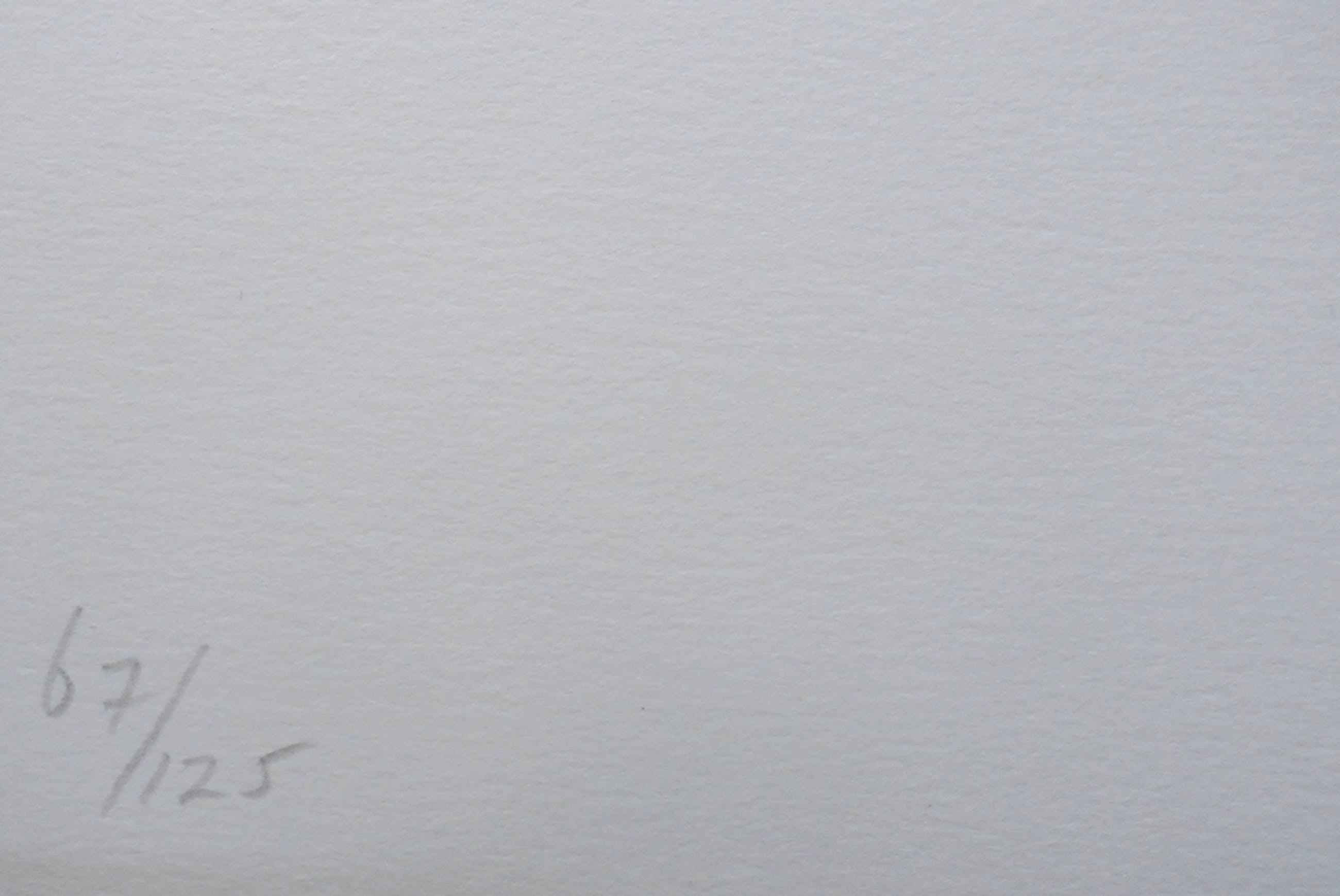 Armando - litho: Het Plechtige, Het Donkere  + tekstblad kopen? Bied vanaf 249!