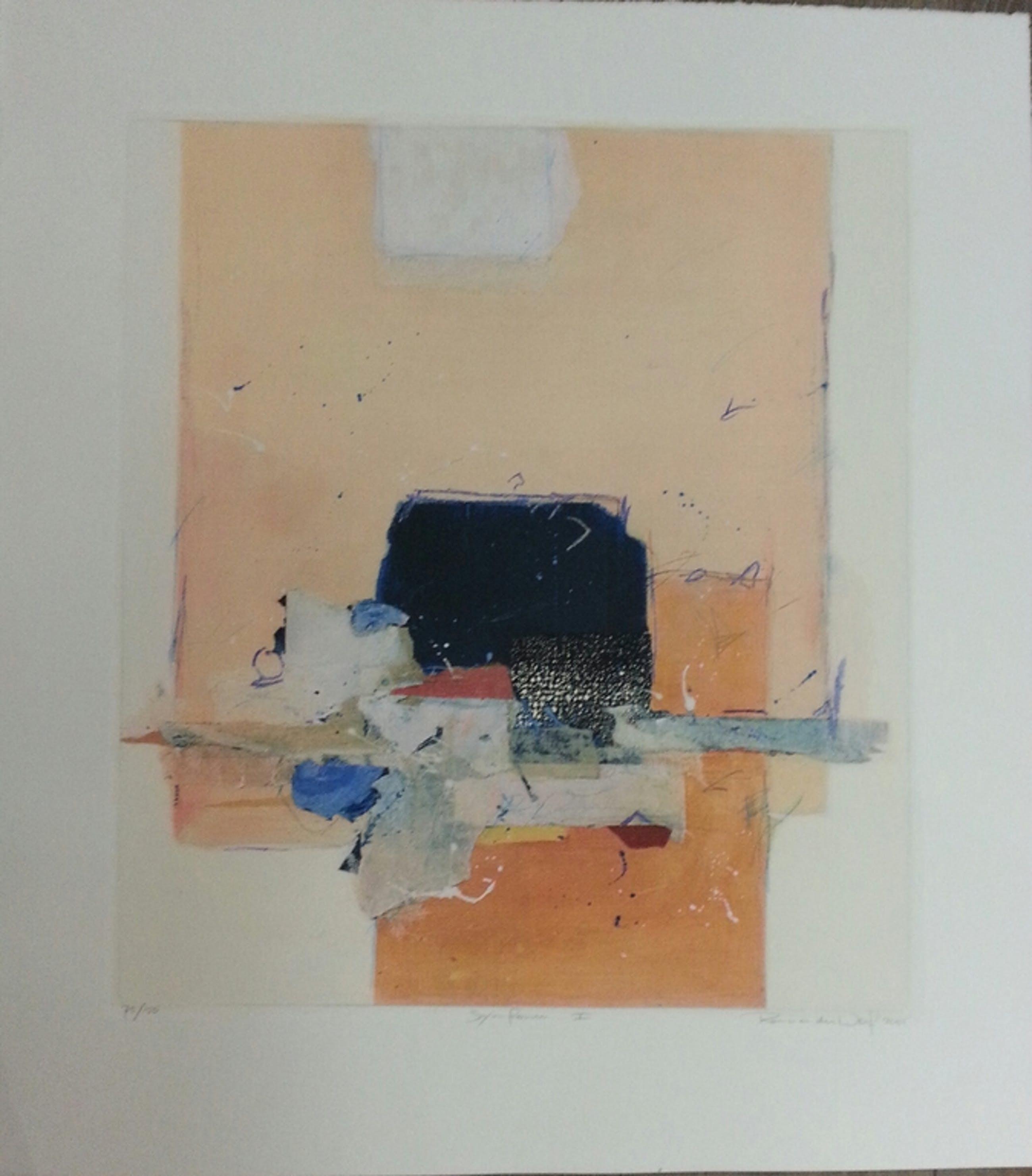 Ron van der Werf, zeefdruk op papier, titel: kopen? Bied vanaf 20!