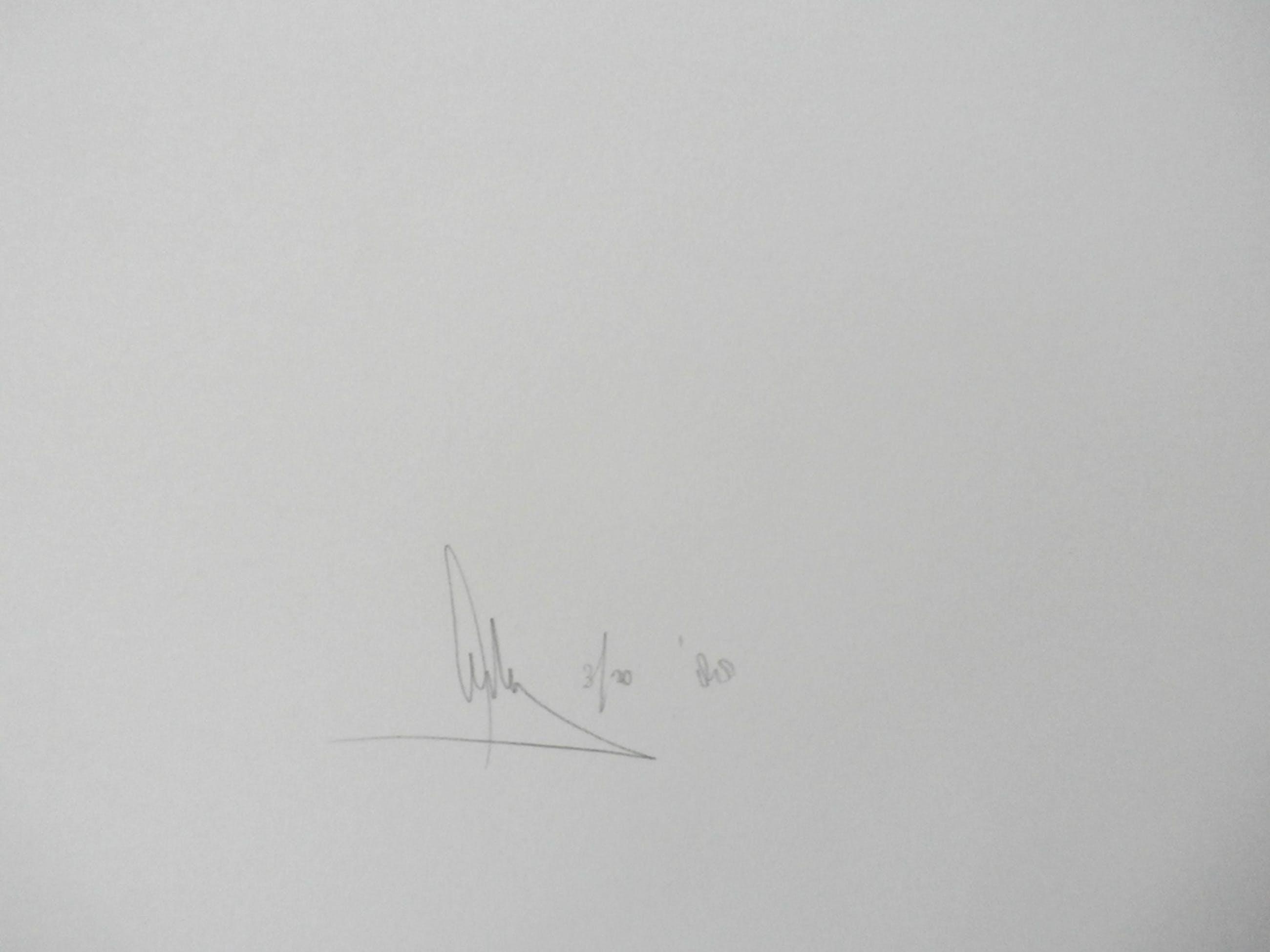 Arty Grimm - grote zeefdruk: abstracte compositie - 1988 - oplage: 20 stuks kopen? Bied vanaf 70!