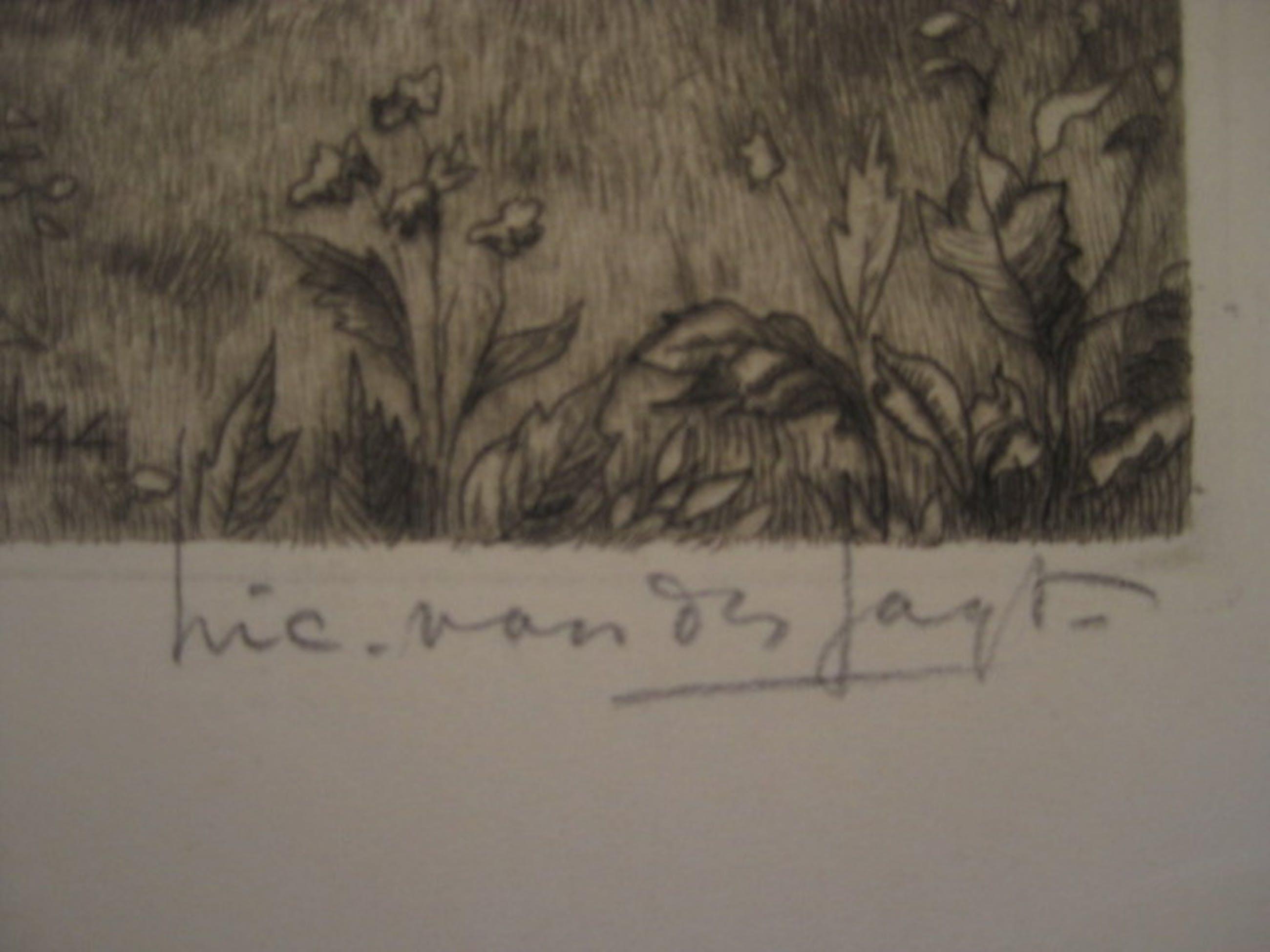 """Karakteristieke ets """"Geiten bij boerderij in de Achterhoek""""van Nico vd Jagt 1888 kopen? Bied vanaf 1!"""