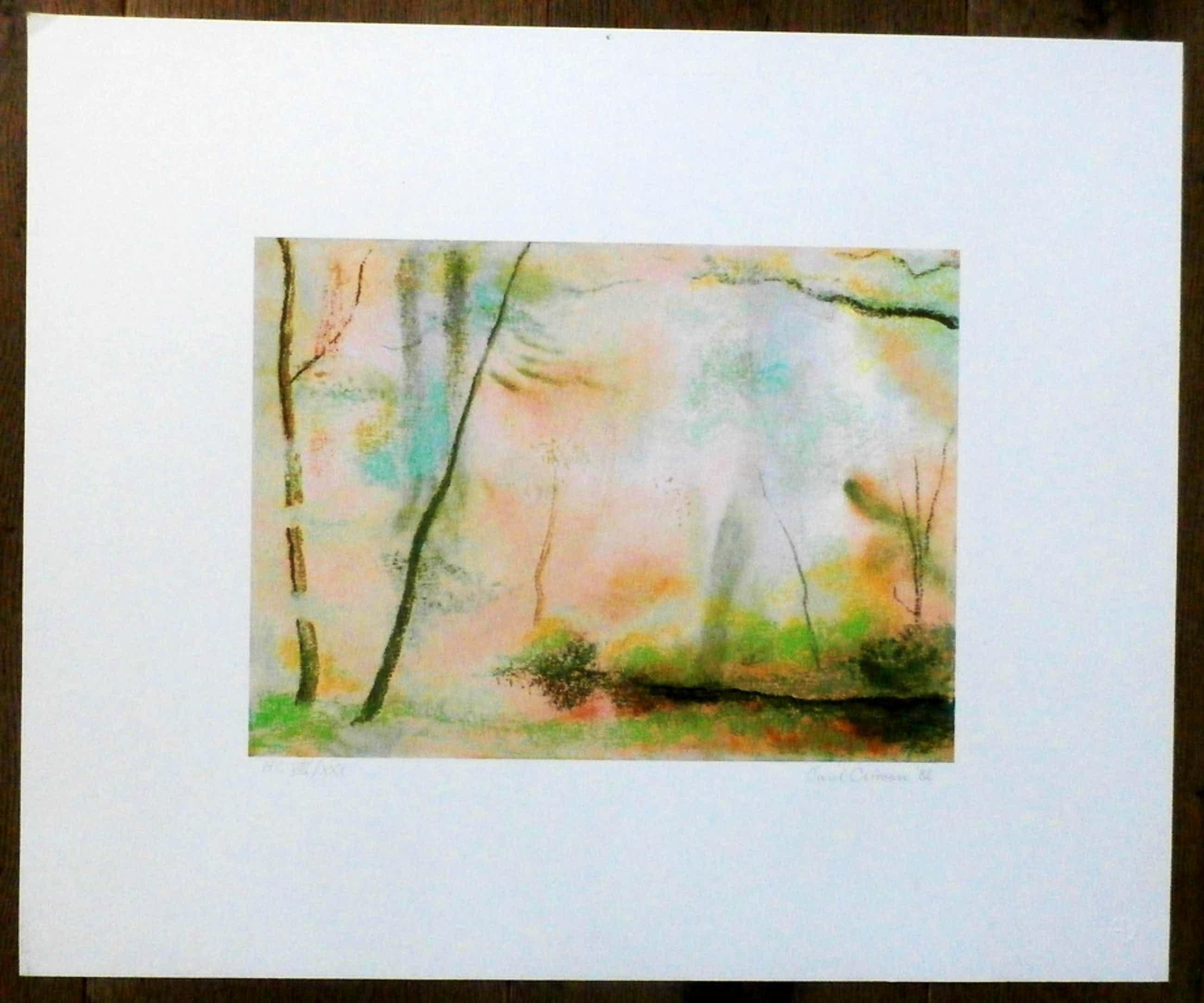 Paul Citroen-kleurenlitho: landschap -1982 kopen? Bied vanaf 100!