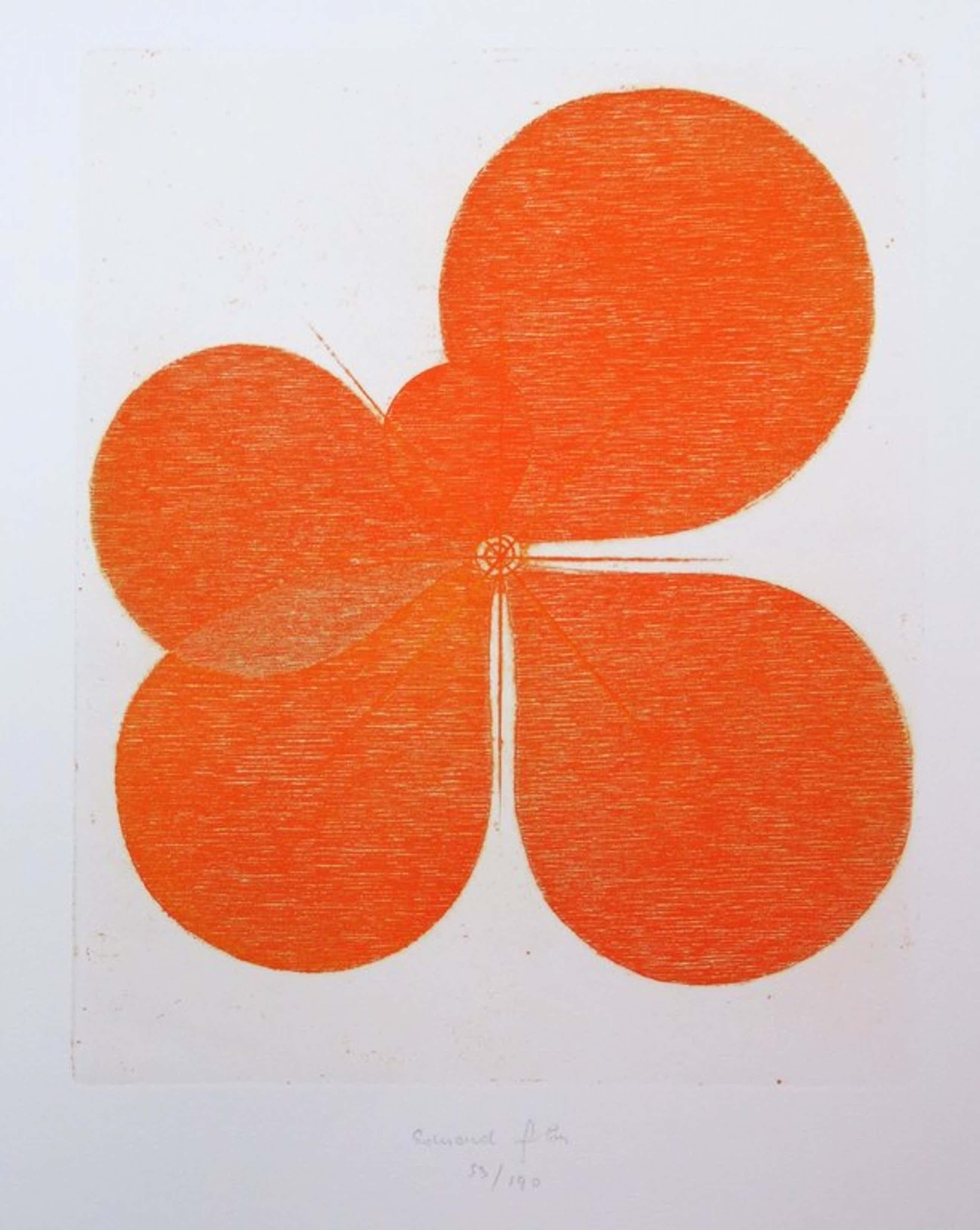 Eduard Flor: Ets, Le printemps oranje kopen? Bied vanaf 35!