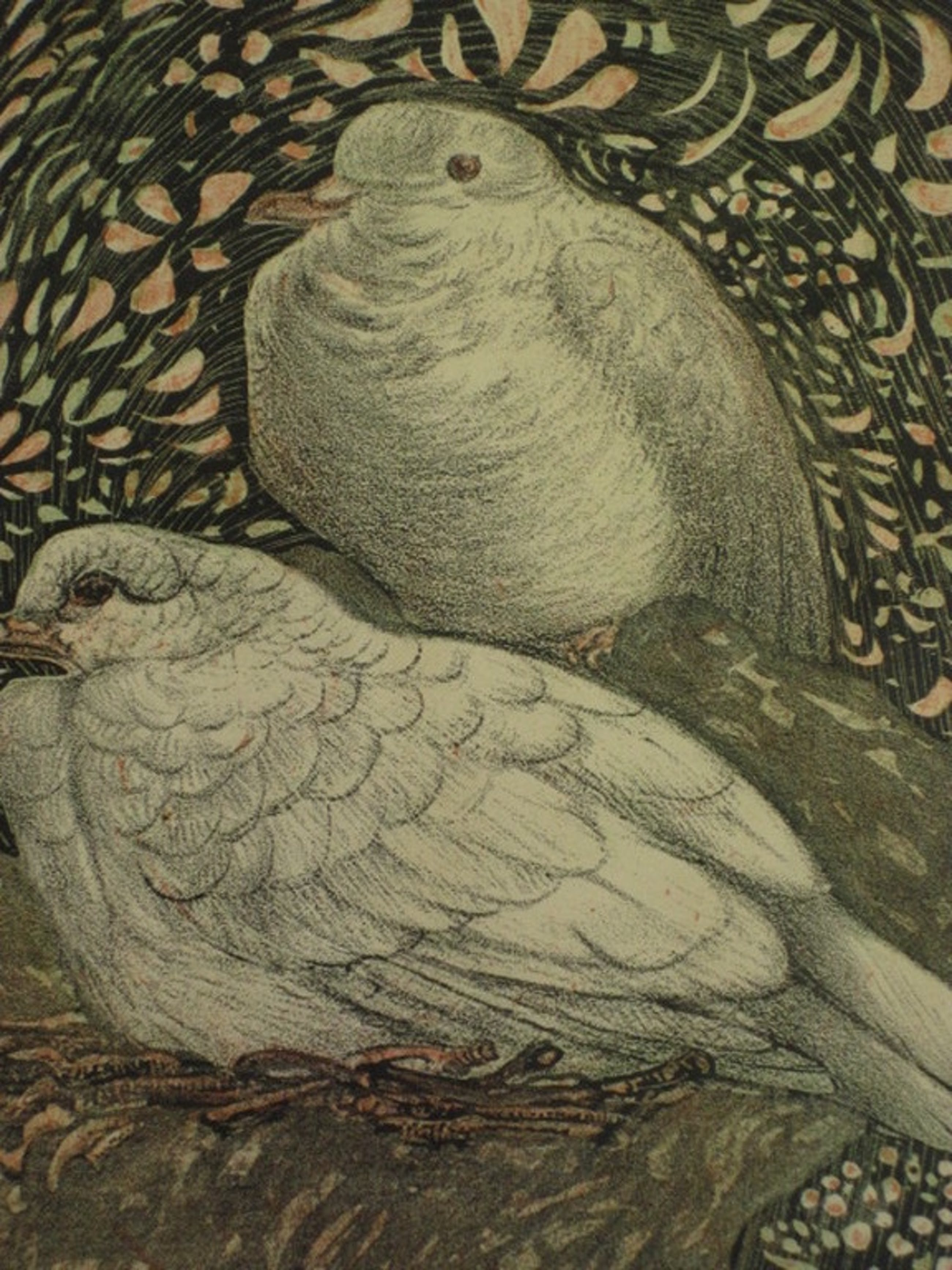 Theo van Hoytema 1863-1917 originele litho 1906 (kalender Going to the Zoo)  kopen? Bied vanaf 1!