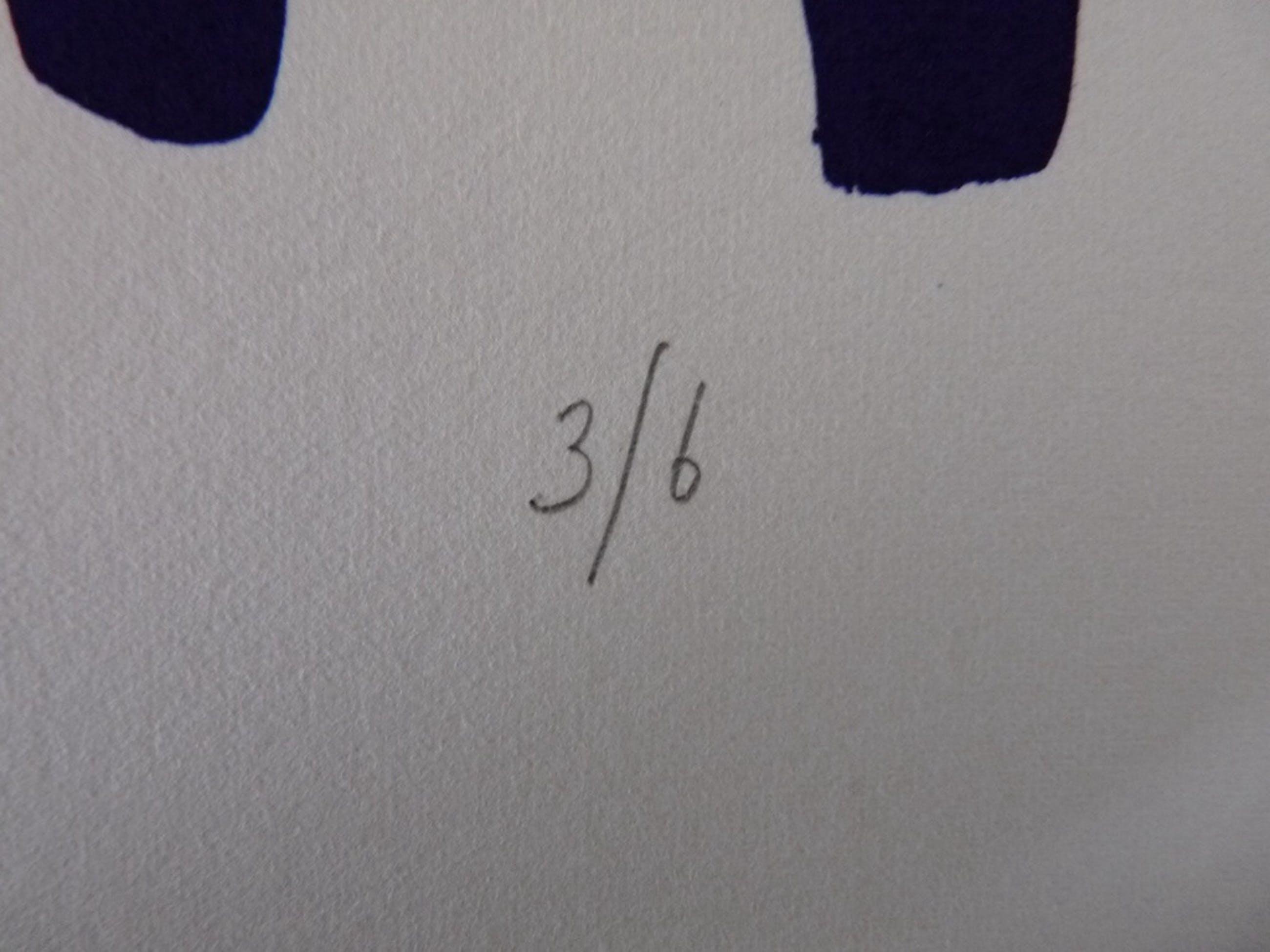 mooie kleur lithografie van Gerrit Westerveld kopen? Bied vanaf 50!