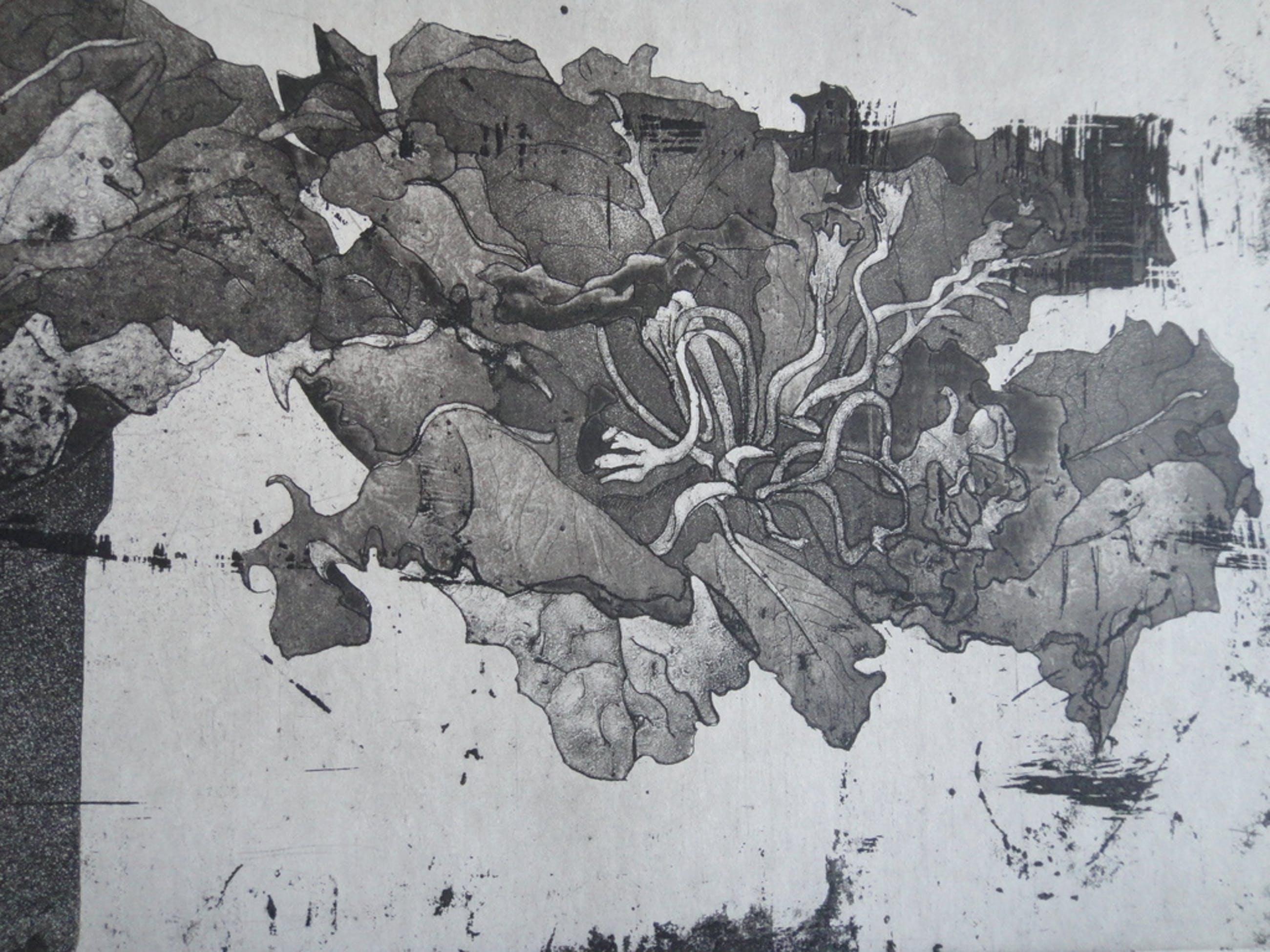 Jan Prins (1956) - (zeldzame) ets - bloemen in pot  kopen? Bied vanaf 1!