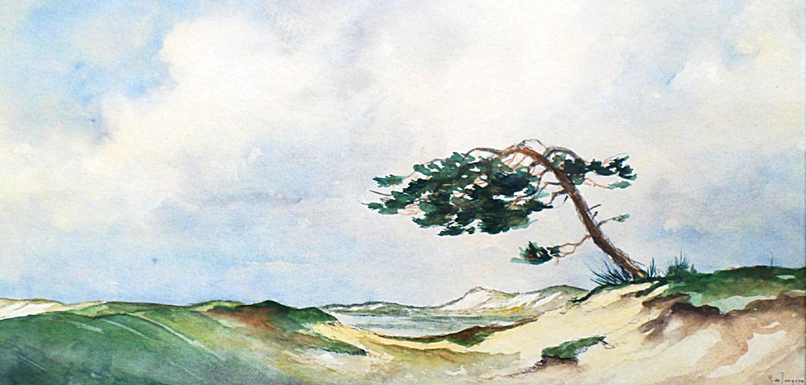 Marinus de Jongere - Duinpan, aquarel (ingelijst) kopen? Bied vanaf 51!