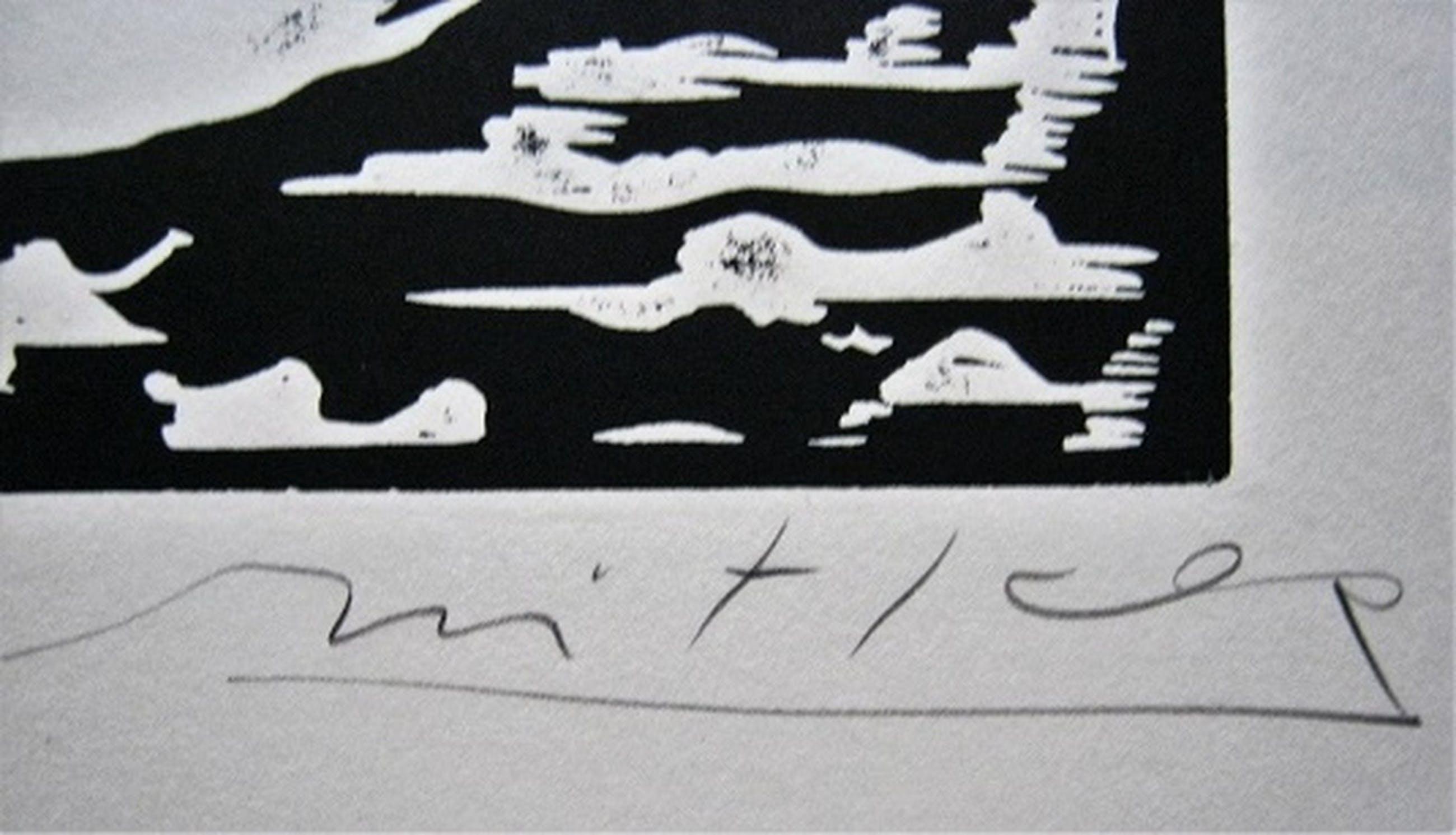 Willem Snitker--de eend--lino kopen? Bied vanaf 39!