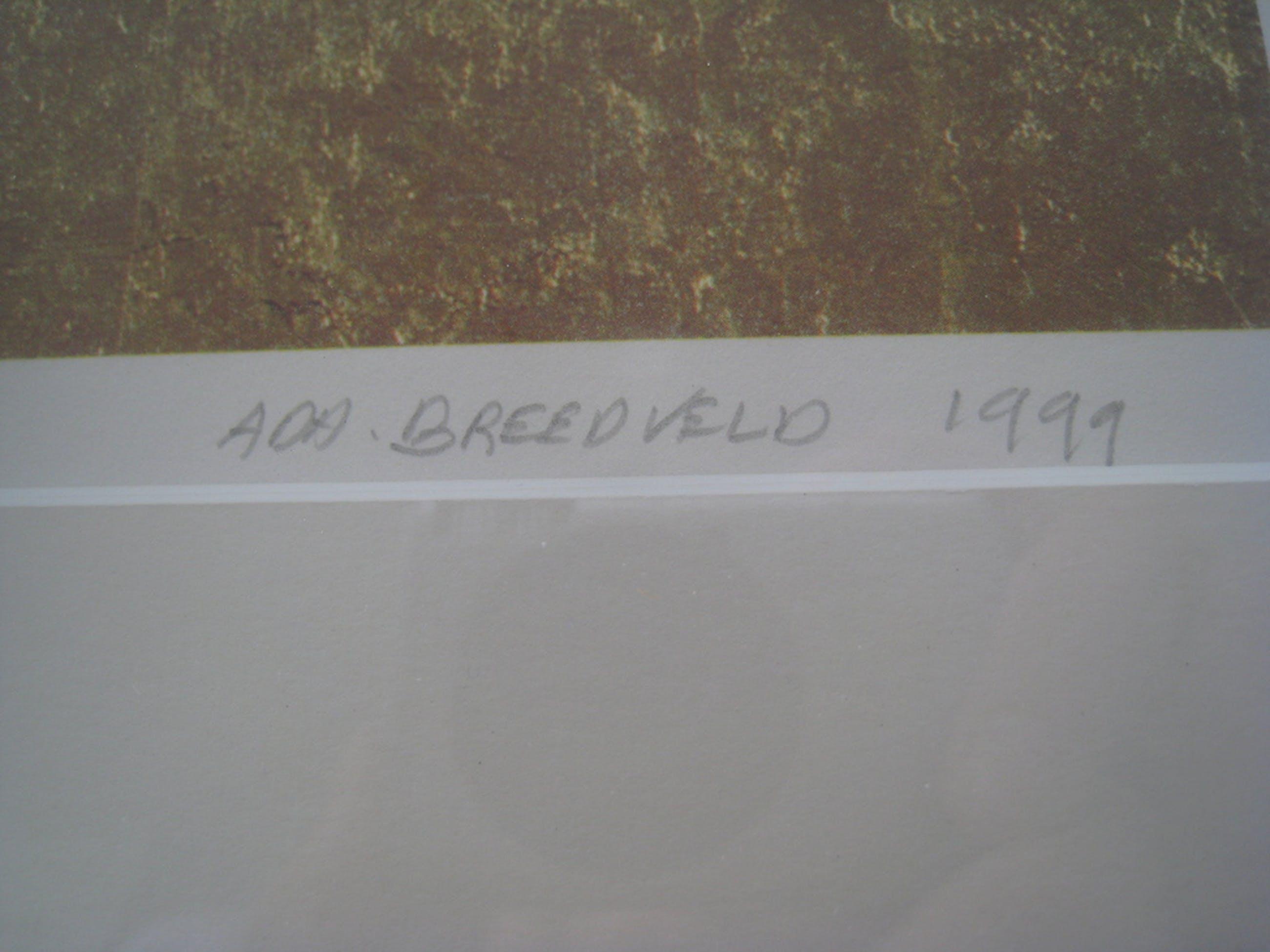 Zeefdruk Ada Breedveld 1999 kopen? Bied vanaf 35!