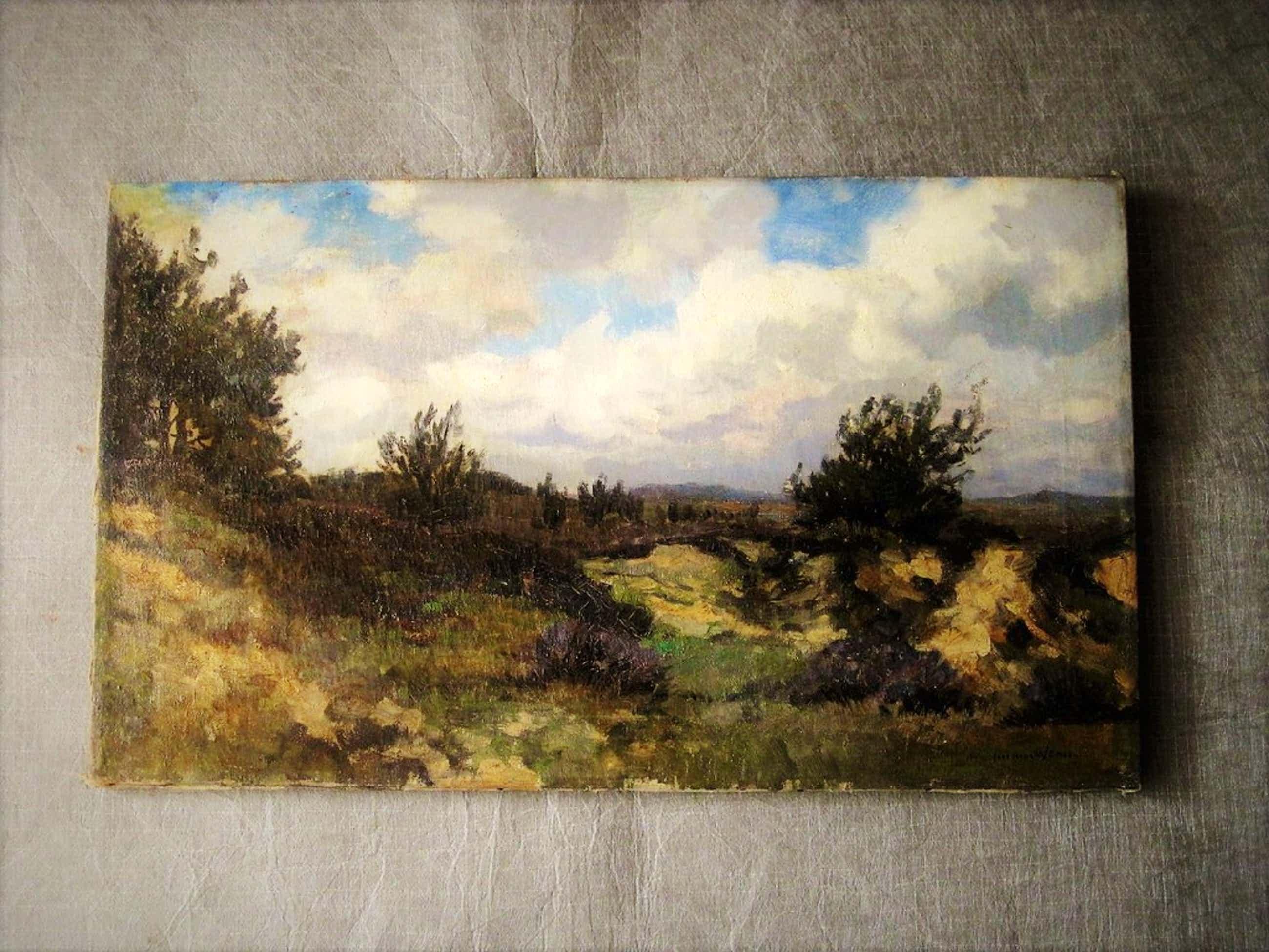 """Omstr 1930 geschilderd olieverf """"Wolken boven Schiermonnikoog"""" M.van Waning      kopen? Bied vanaf 90!"""