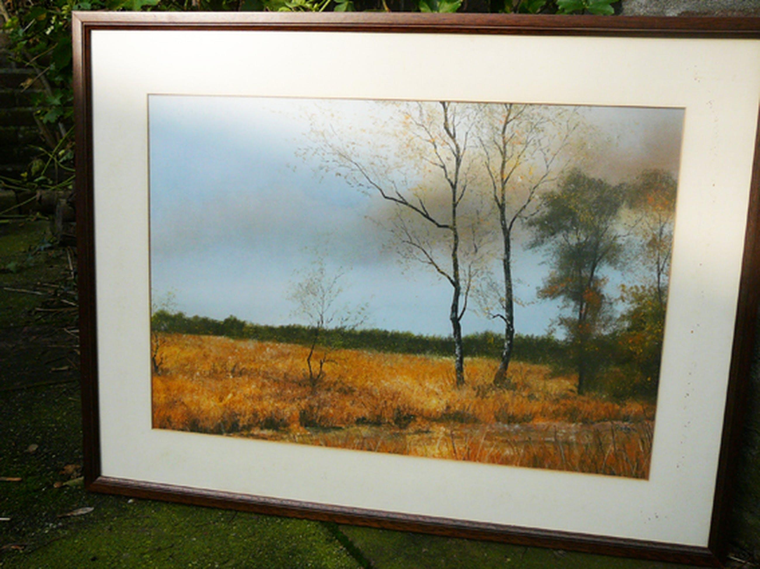 Frans Romeijnsen: Cartierheide -aquarel/pastel- kopen? Bied vanaf 45!