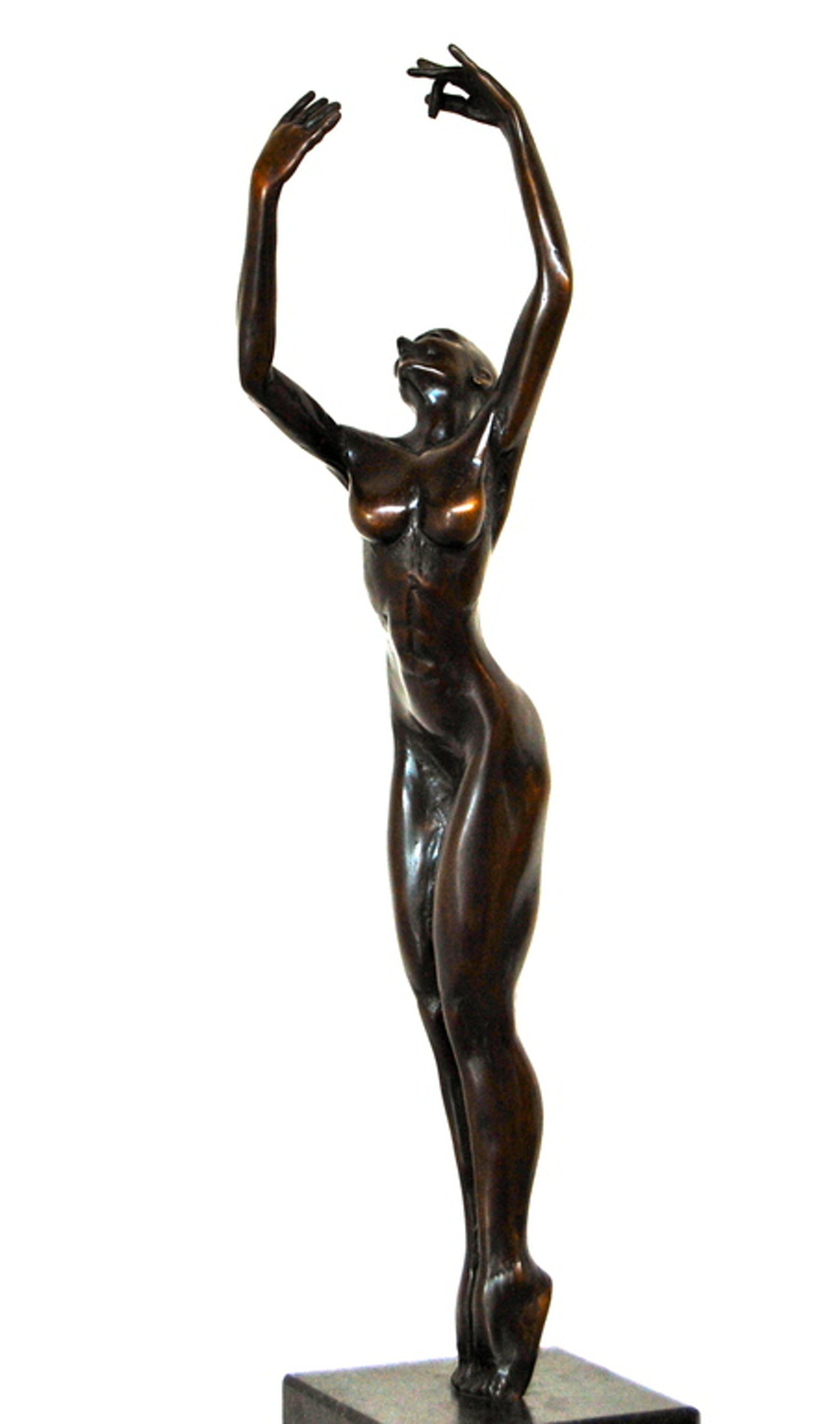 Frans van Straaten , Bronzen beeld,  kopen? Bied vanaf 750!
