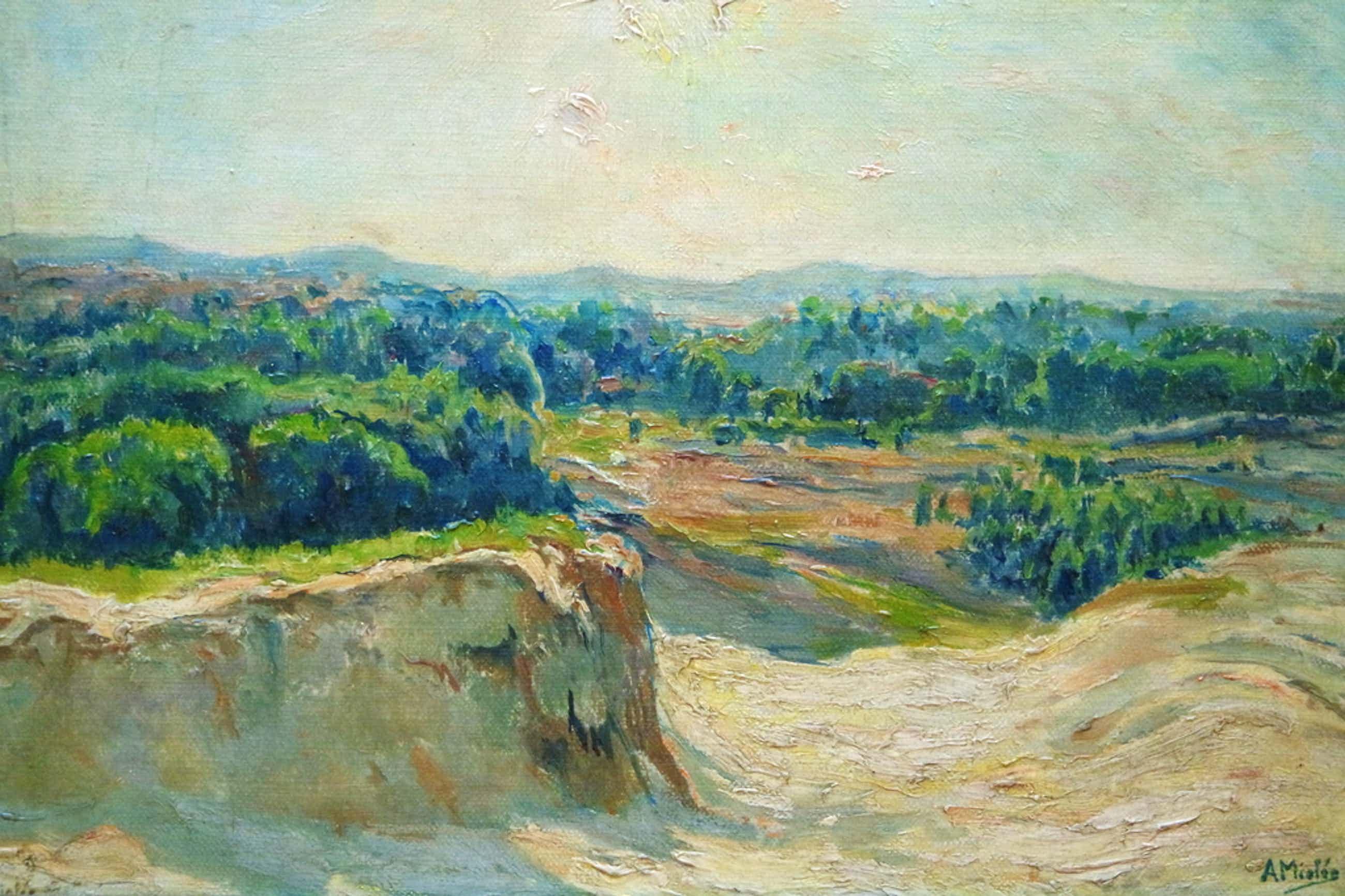 Adrianus Miolee (1879 - 1961) - olieverf op doek - duinlandschap I kopen? Bied vanaf 255!