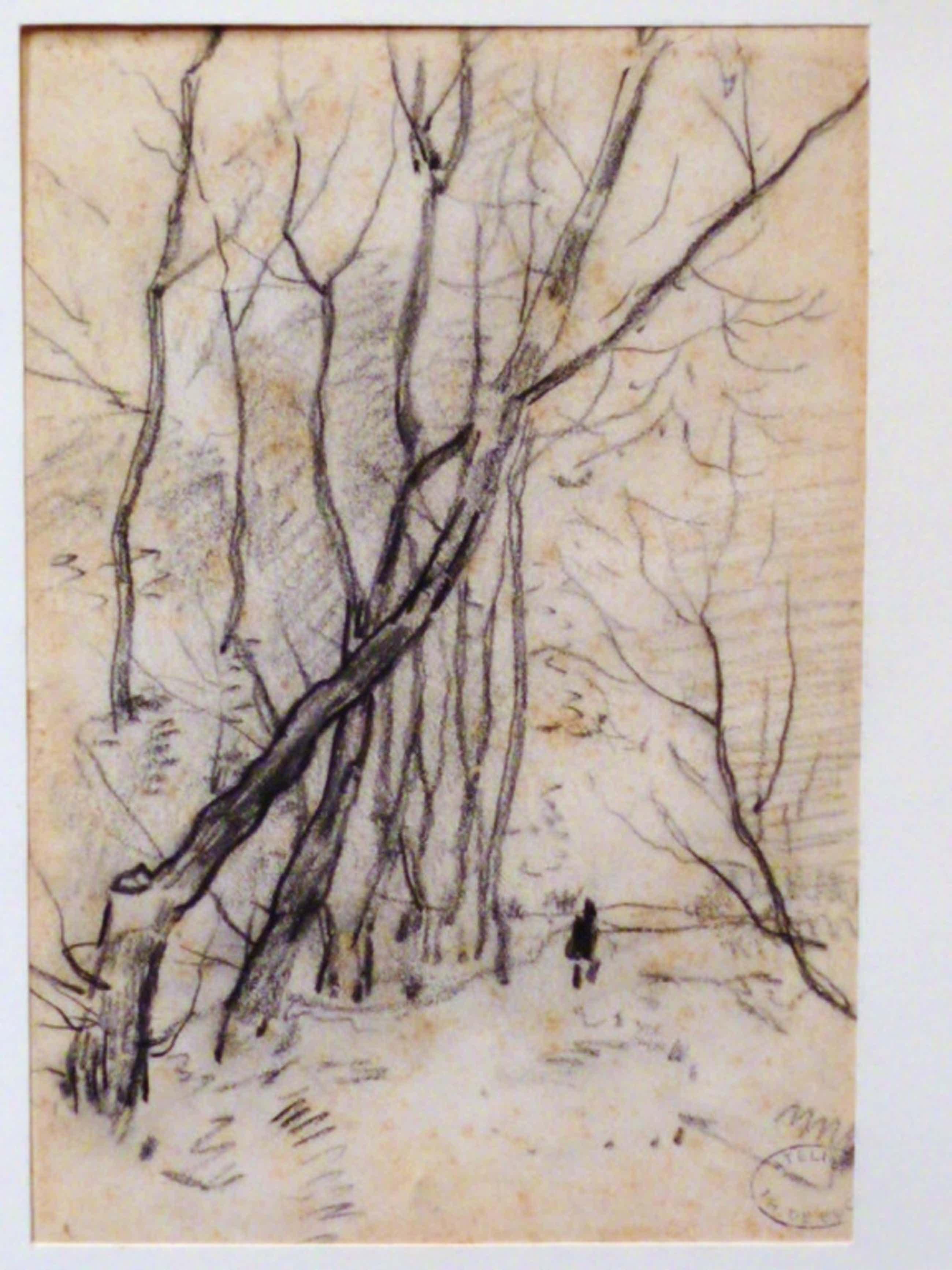 Theophile de Bock - tekening - Bomenstudie kopen? Bied vanaf 55!