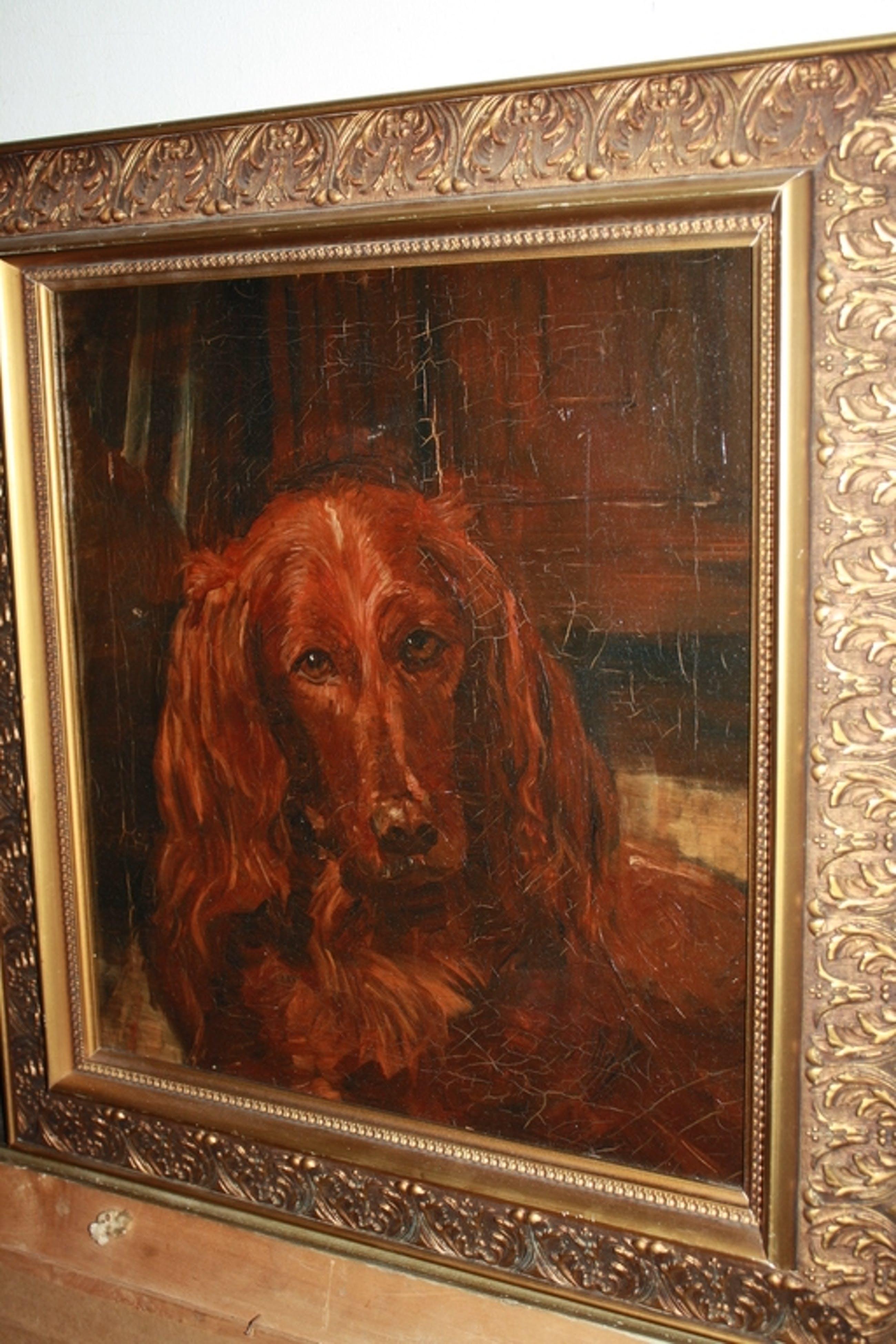 Edith Pijpers - IERSE SETTER - schilderij hond kopen? Bied vanaf 55!
