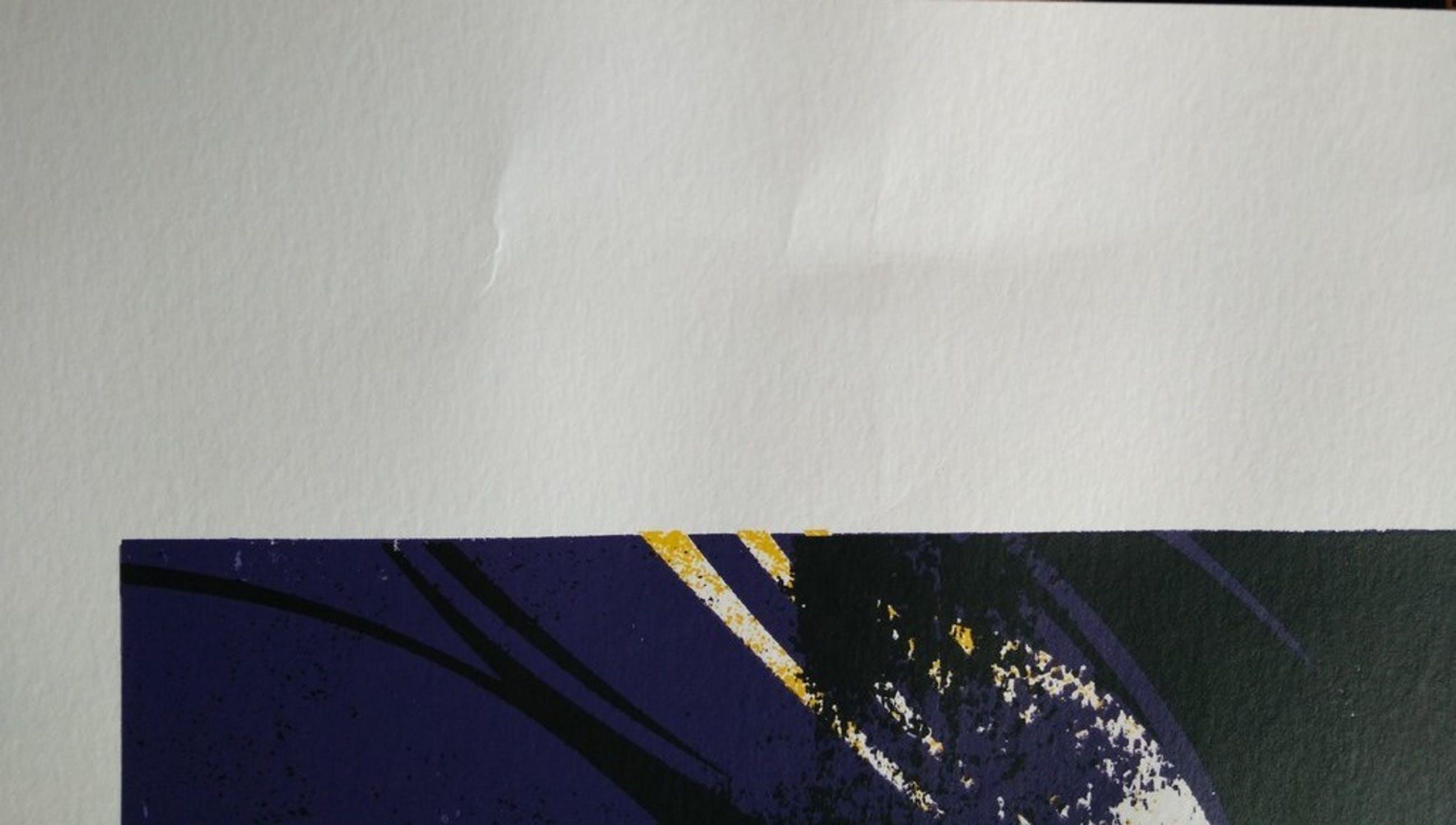 Seel (Sly): Kleurenlitho, Kobe Bryant, gesigneerde limited edition kopen? Bied vanaf 15!
