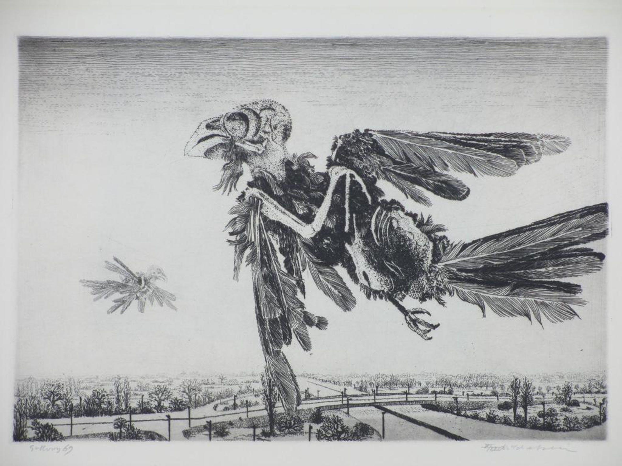 Gerard van Rooy, Vliegend vogelskelet, Ets 1969 kopen? Bied vanaf 75!