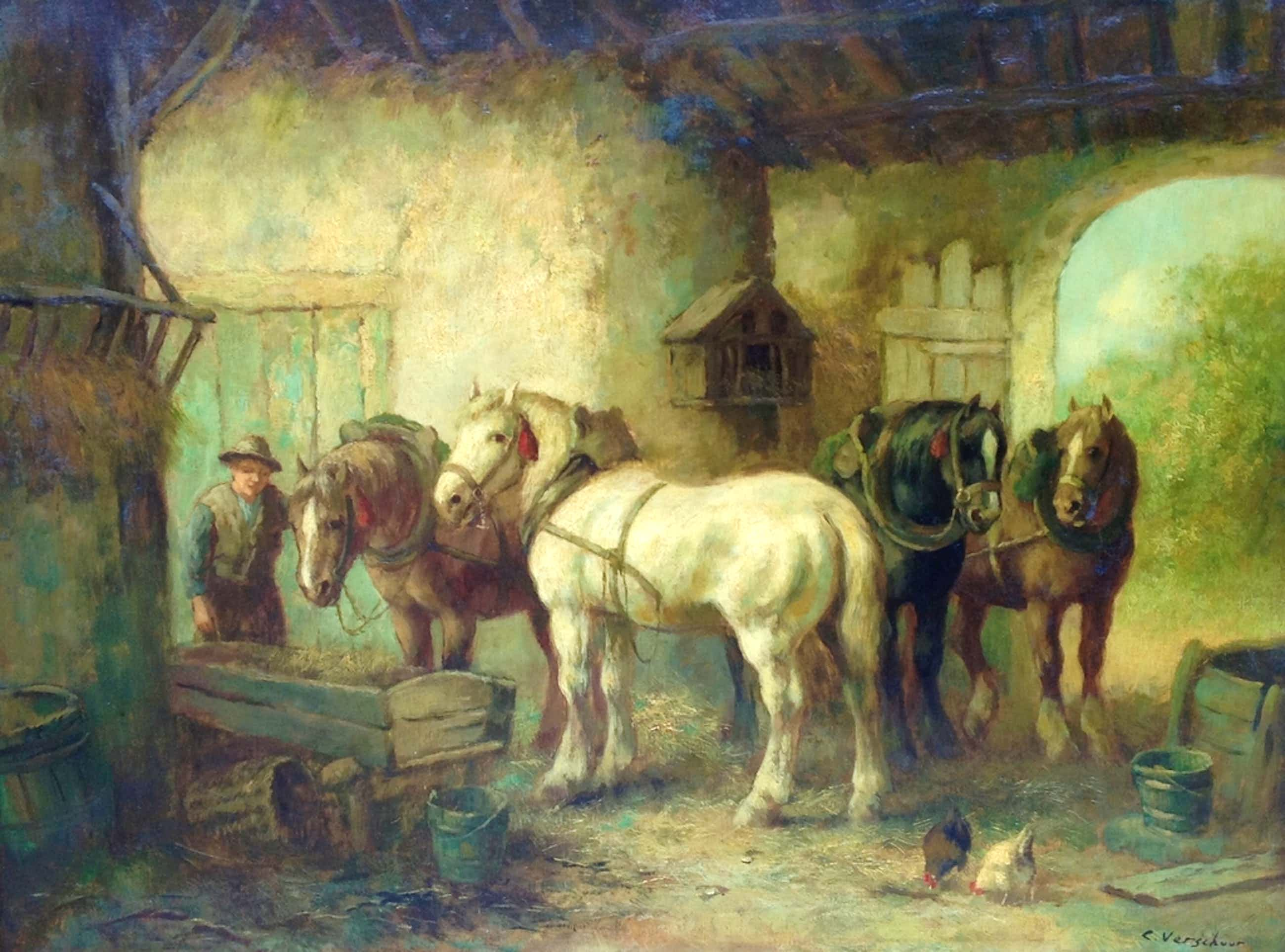 Cor Bouter, paarden in manege  kopen? Bied vanaf 800!
