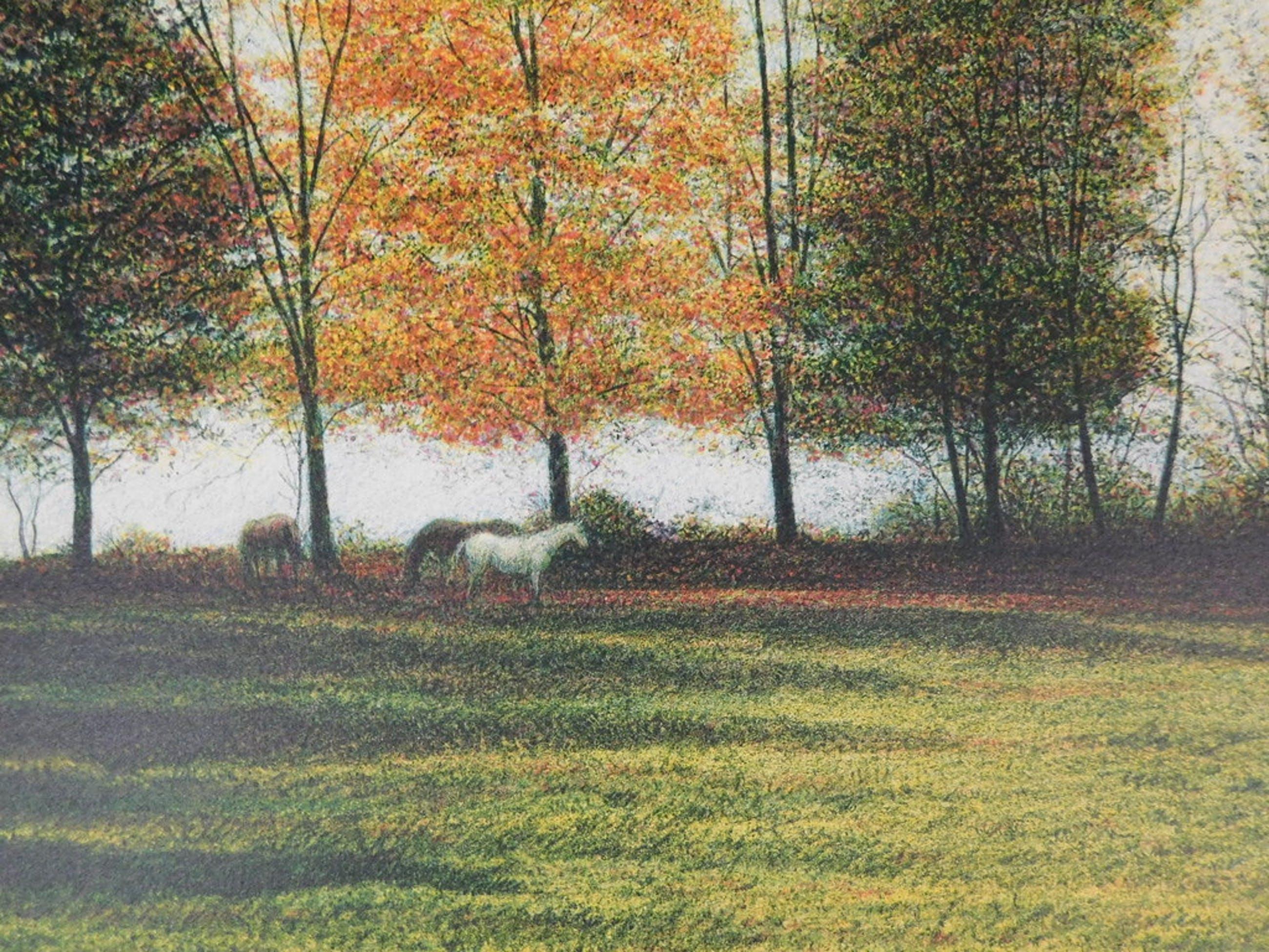 Harold Altman - Kleurenlitho - Paarden in de wei kopen? Bied vanaf 35!
