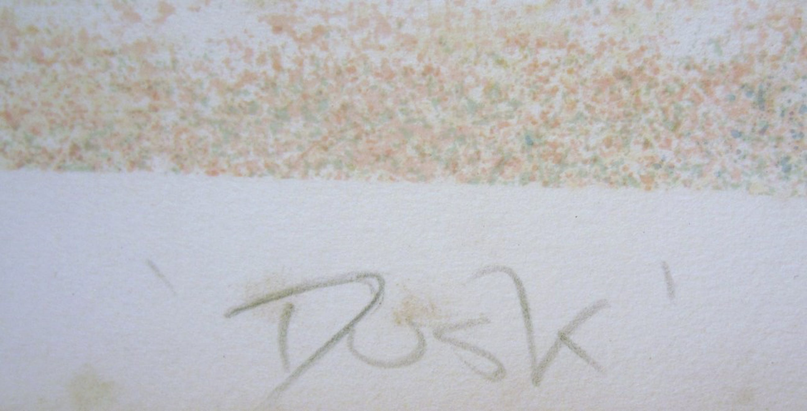 Roy Fairchild-Woodard - Lithografie - oplage 175 - Dusk kopen? Bied vanaf 1!