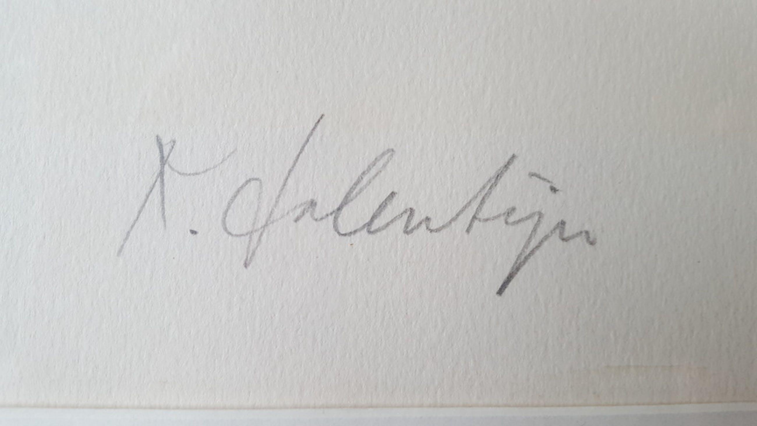 Kees Salentijn - zeefdruk 126/200, gesigneerd (groot) kopen? Bied vanaf 1!