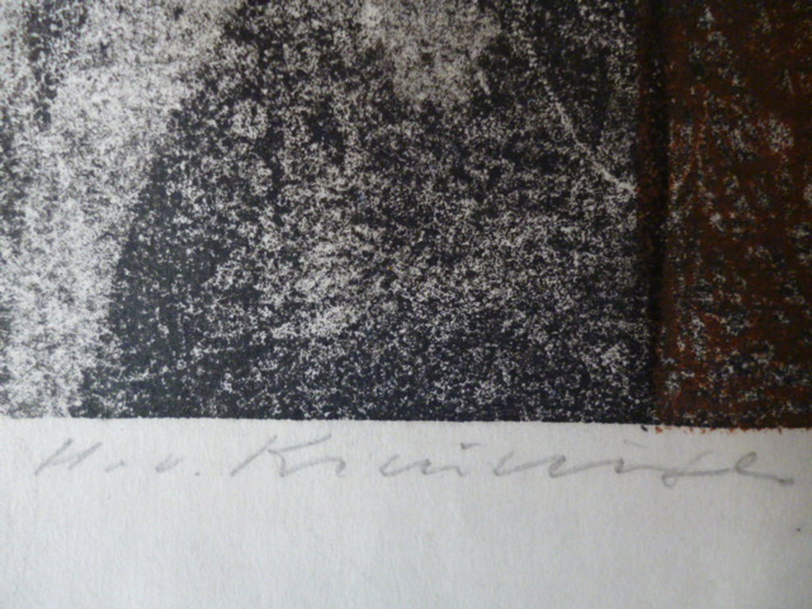 Harry van Kruiningen - kleurenlitho - Dierfiguur met 2 gezichten en rode zon  kopen? Bied vanaf 85!