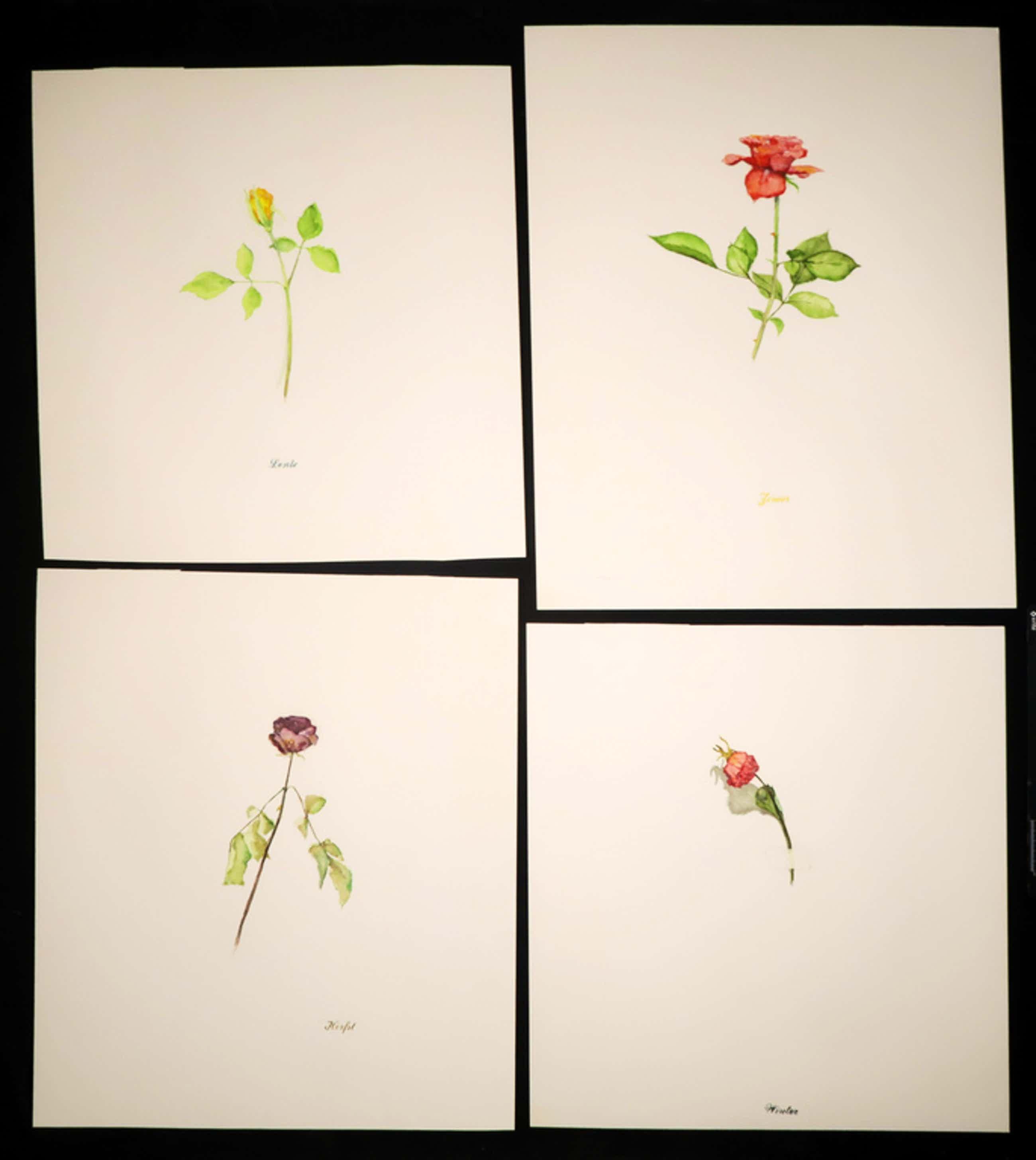 Lot met 4 werken van Pieter Alewijns: Aquarel, Lente, Zomer, Herfst, Winter kopen? Bied vanaf 100!
