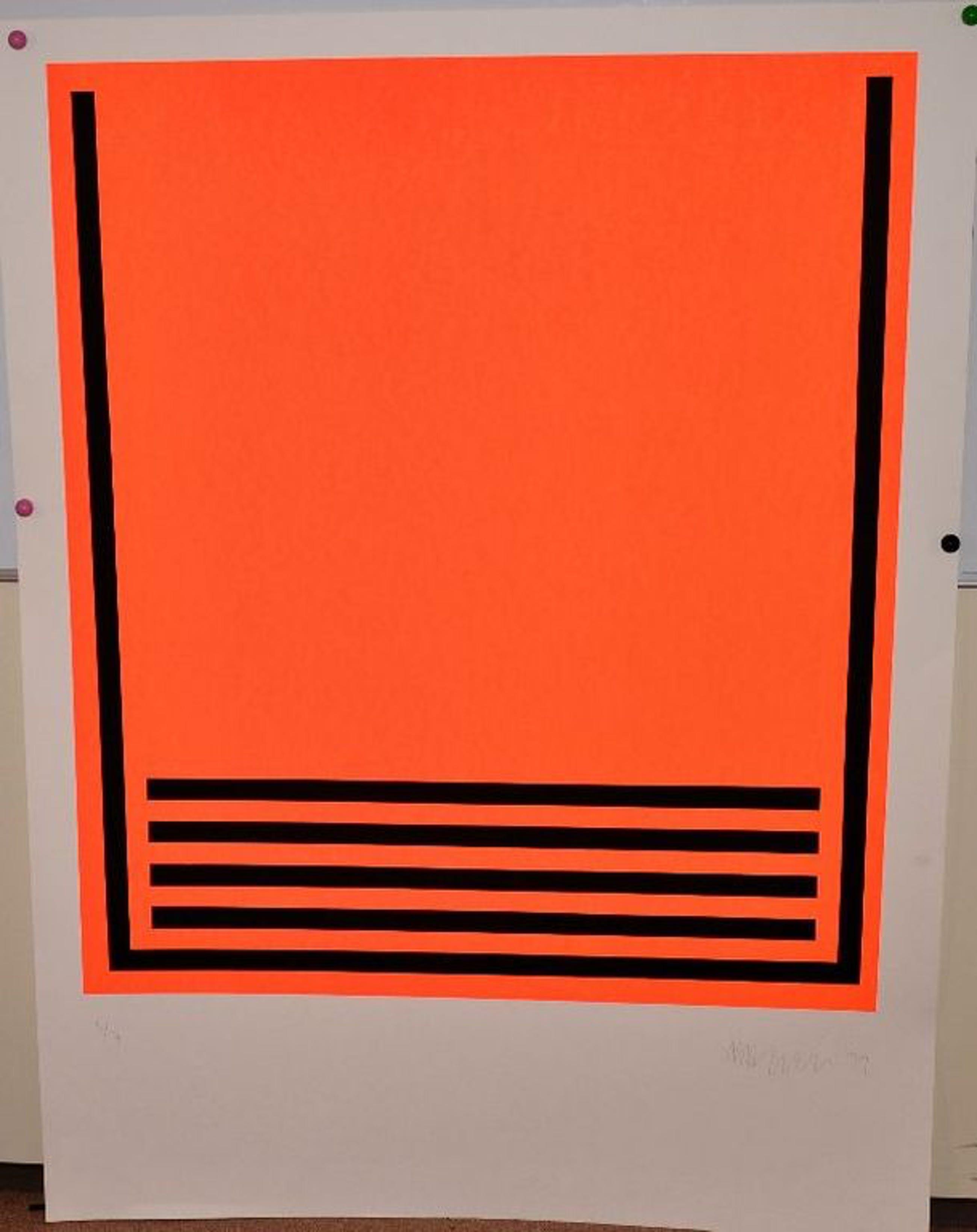Tim Ayres: Zeefdruk. Abstract. Zeer groot formaat. kopen? Bied vanaf 200!