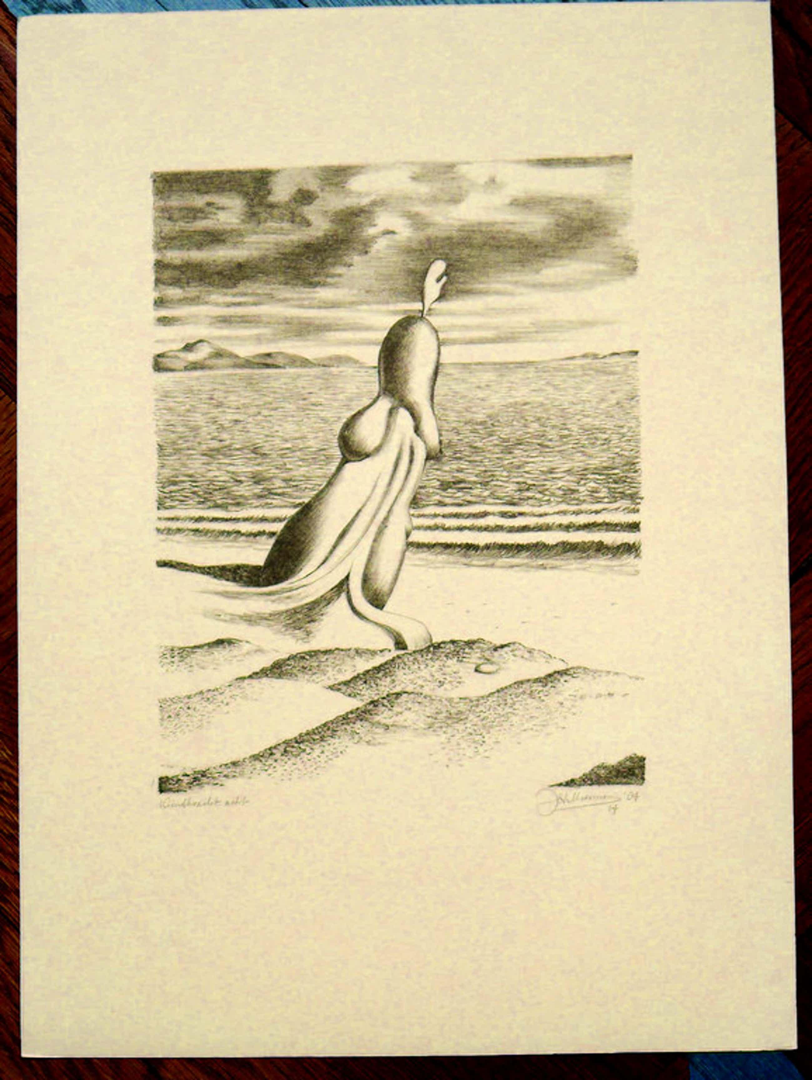 J.H. Moesman, litho uit 1984. titel: windkracht acht. gesigneerd: J.H. Moesman ' kopen? Bied vanaf 100!