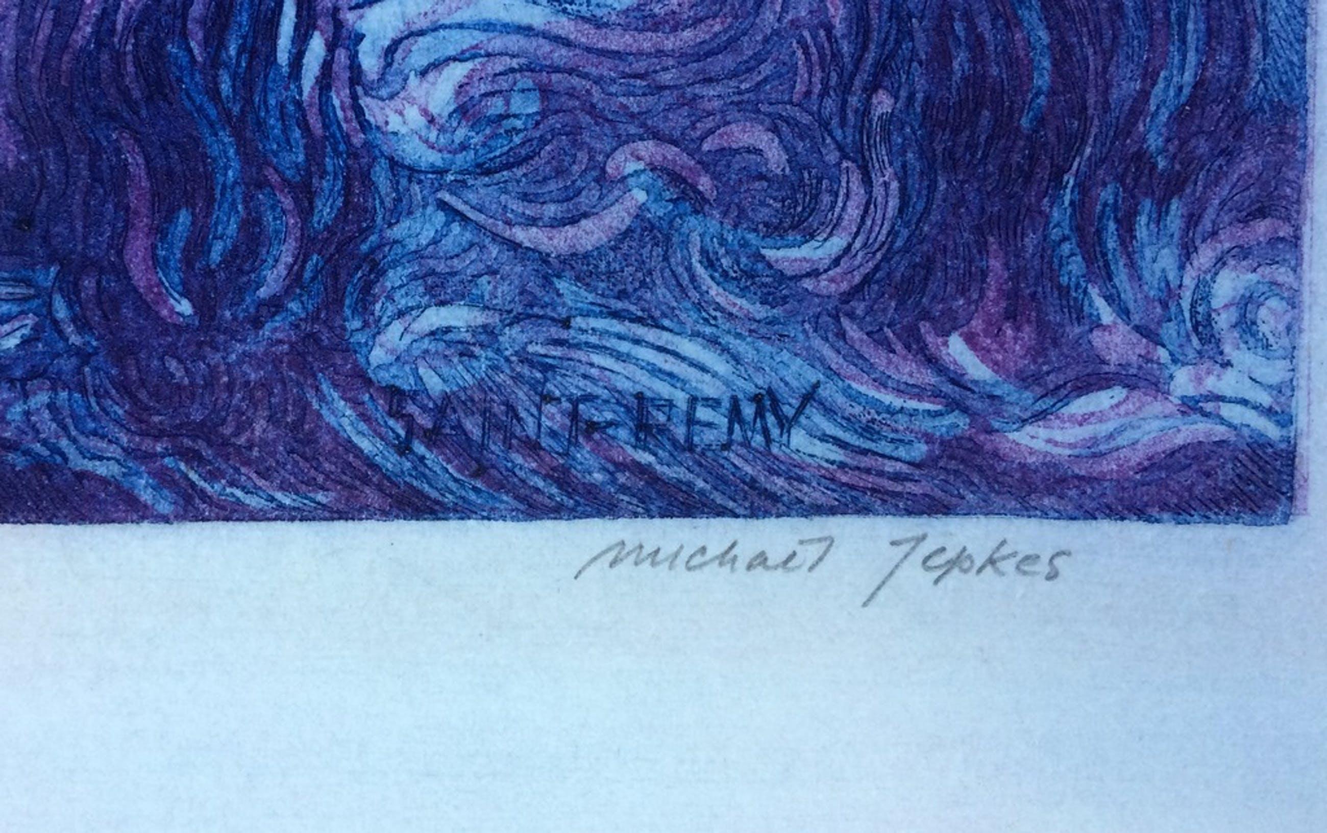 Michael Jepkes: Kleurenets, Van Gogh kopen? Bied vanaf 1!
