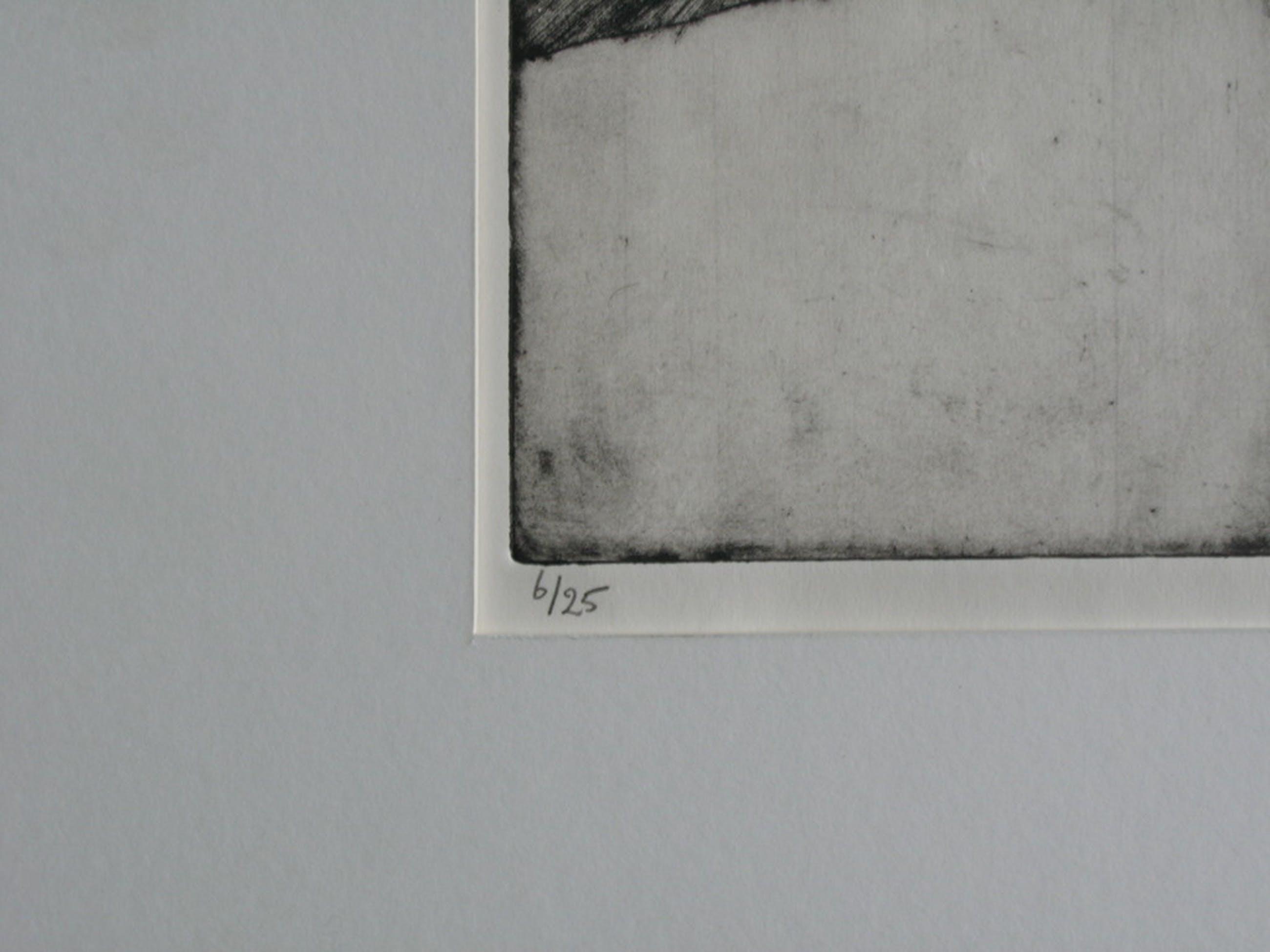 MARJAN SMIT - ETS uit 25 (1987) - GESIGNEERD en mooi INGELIJST.  kopen? Bied vanaf 200!