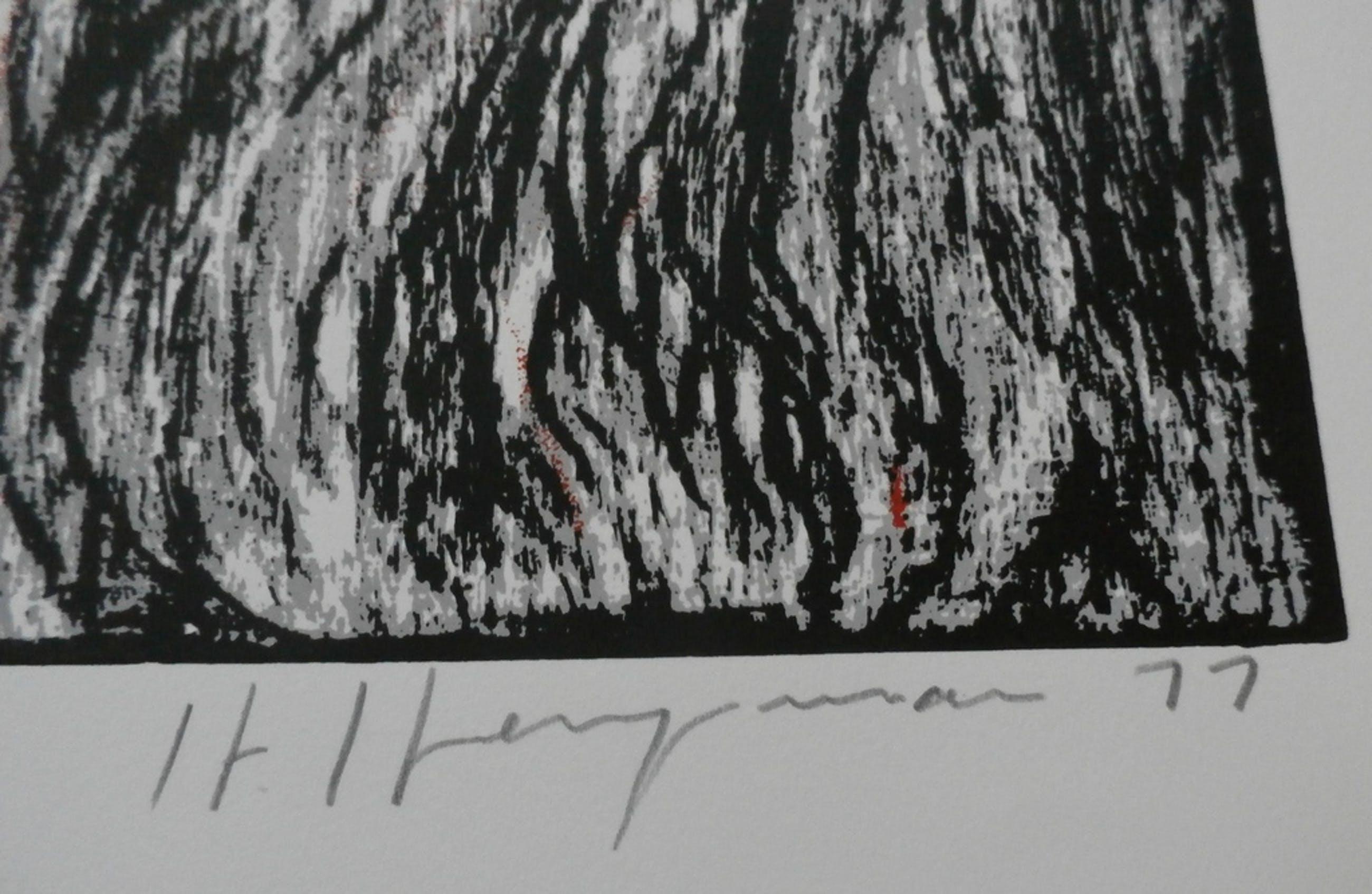 Hugo Heyrman - litho kopen? Bied vanaf 40!
