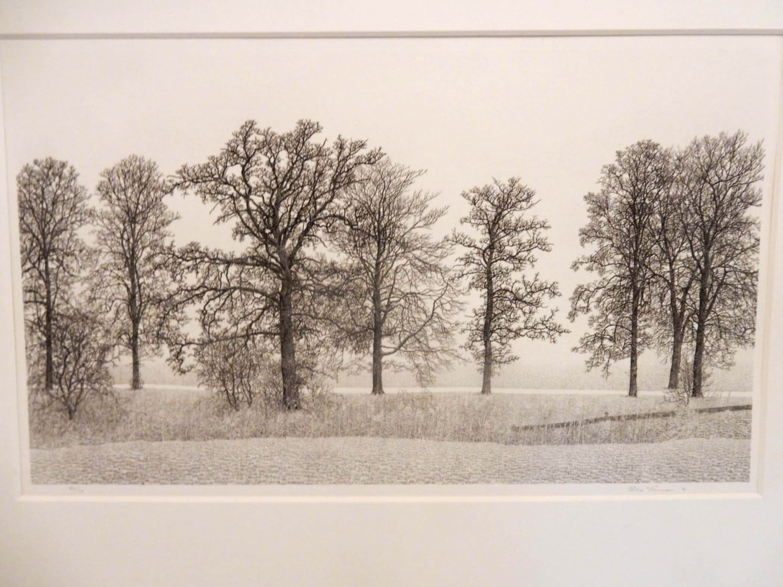 Philip Wiesman, ets / bomen in landschap in passe partout met lijst kopen? Bied vanaf 50!