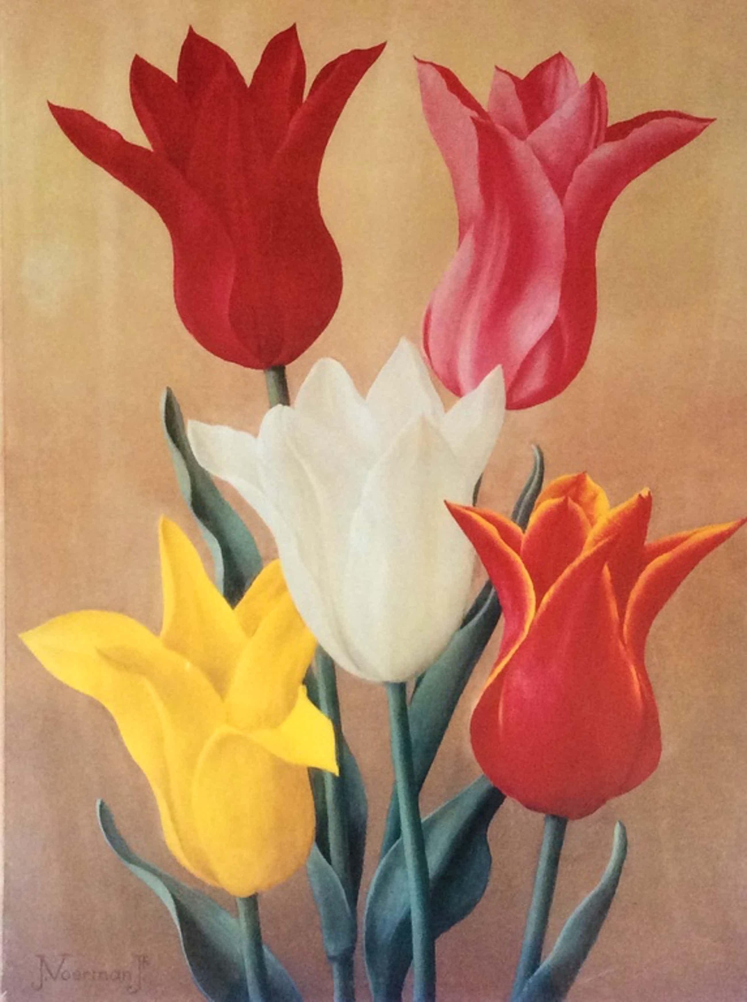 Jan Voerman Jr  Tulpen  Litho/Druk ingelijst 36 x 49 cm kopen? Bied vanaf 35!