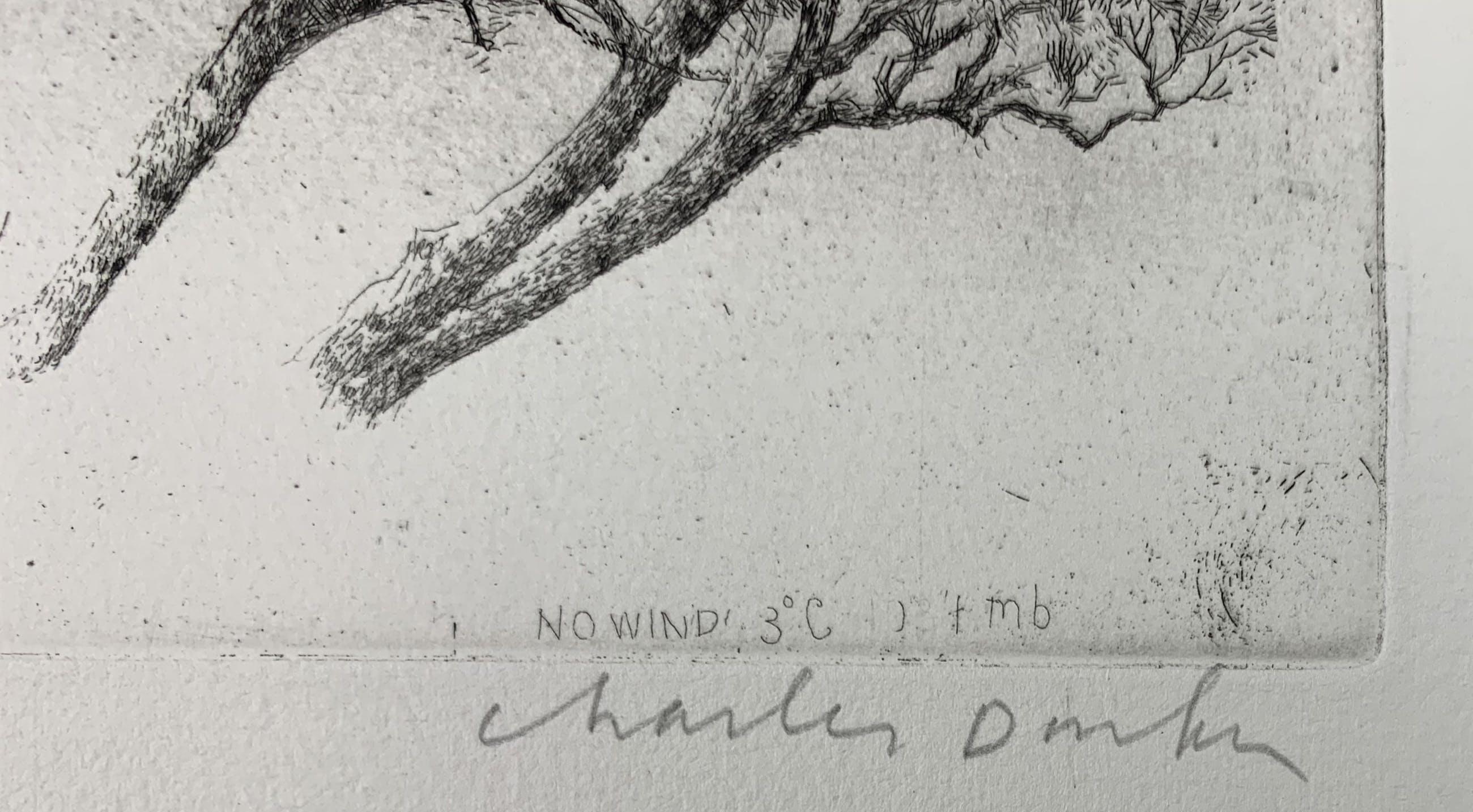 Charles Donker - ets - Noordoostenwind - definitieve, 3e staat - 1984 kopen? Bied vanaf 350!