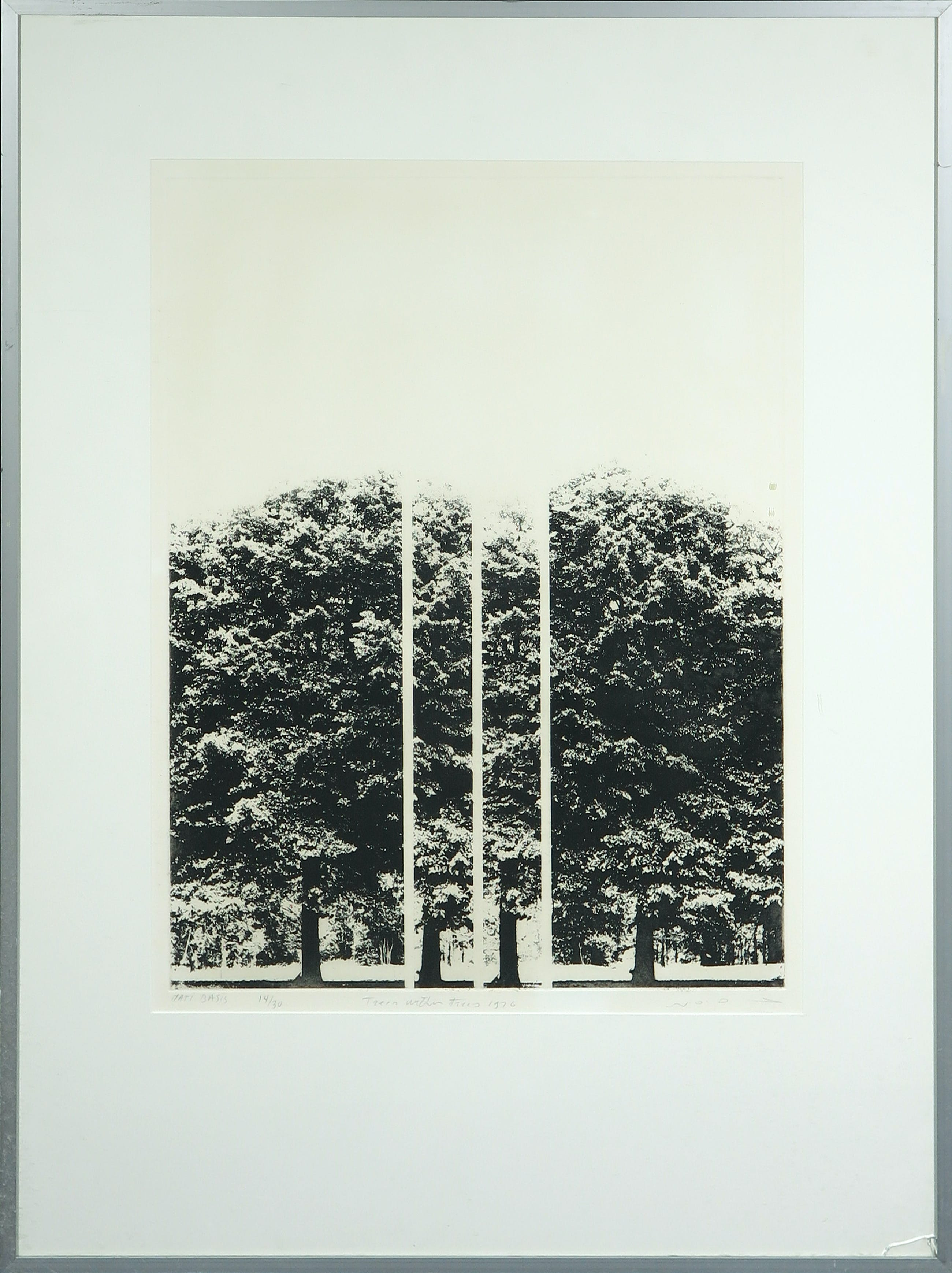 Matti Basis - Ets, Trees within trees - Ingelijst kopen? Bied vanaf 50!