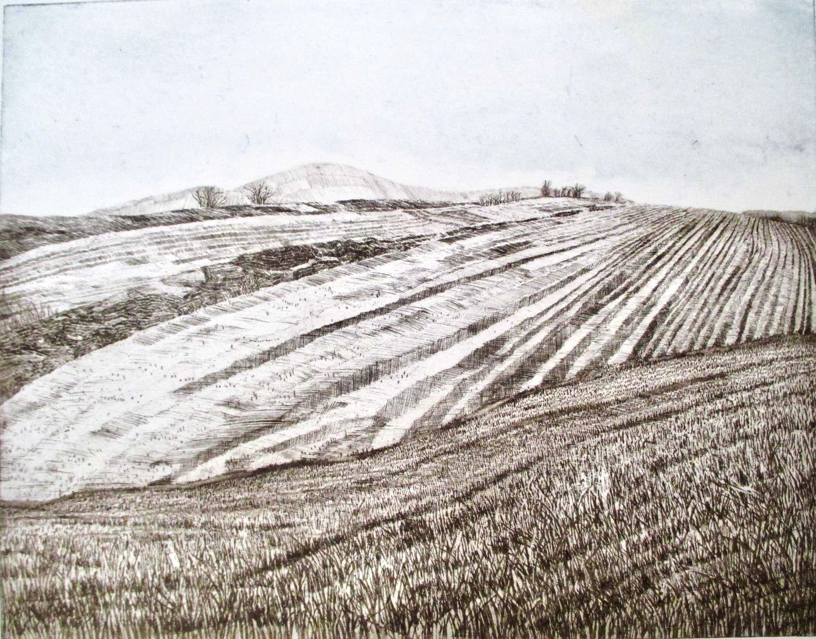 Peter Redeker - Ets Landschaft IIIb kopen? Bied vanaf 75!
