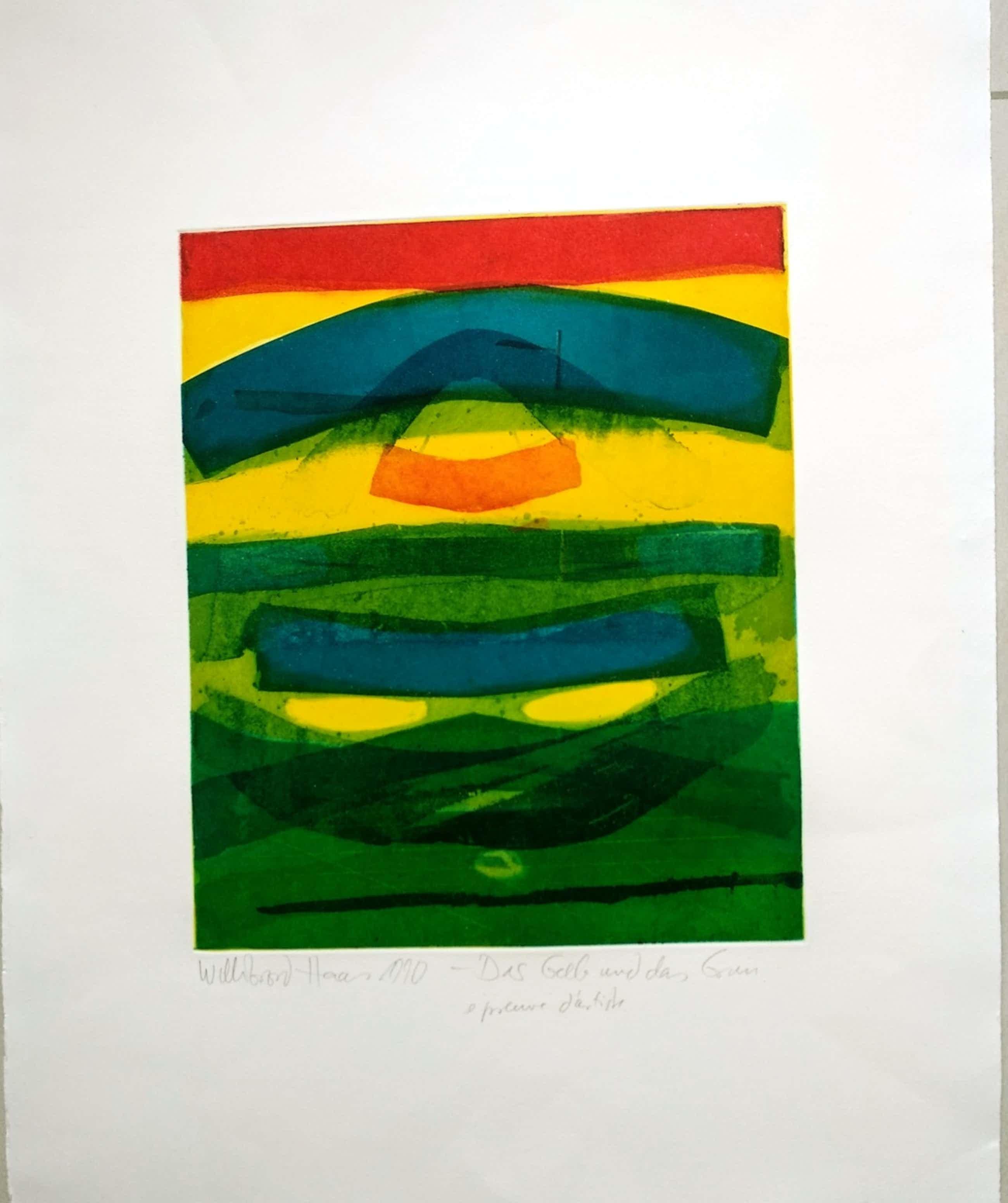Willibrord Haas - Das Gelb und das Grün, 1990 kopen? Bied vanaf 130!