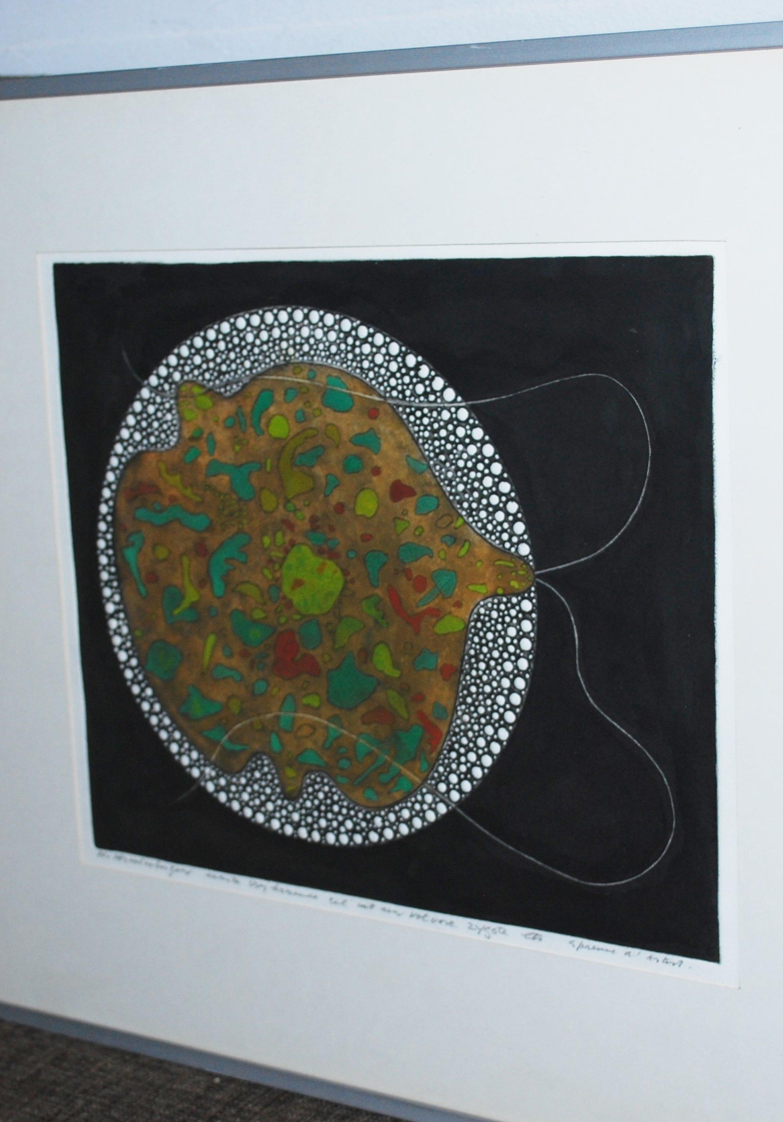 Harry van Kruiningen - epreuve d'artist - ets met reliëf - vrijkomende cel uit een zygote kopen? Bied vanaf 75!