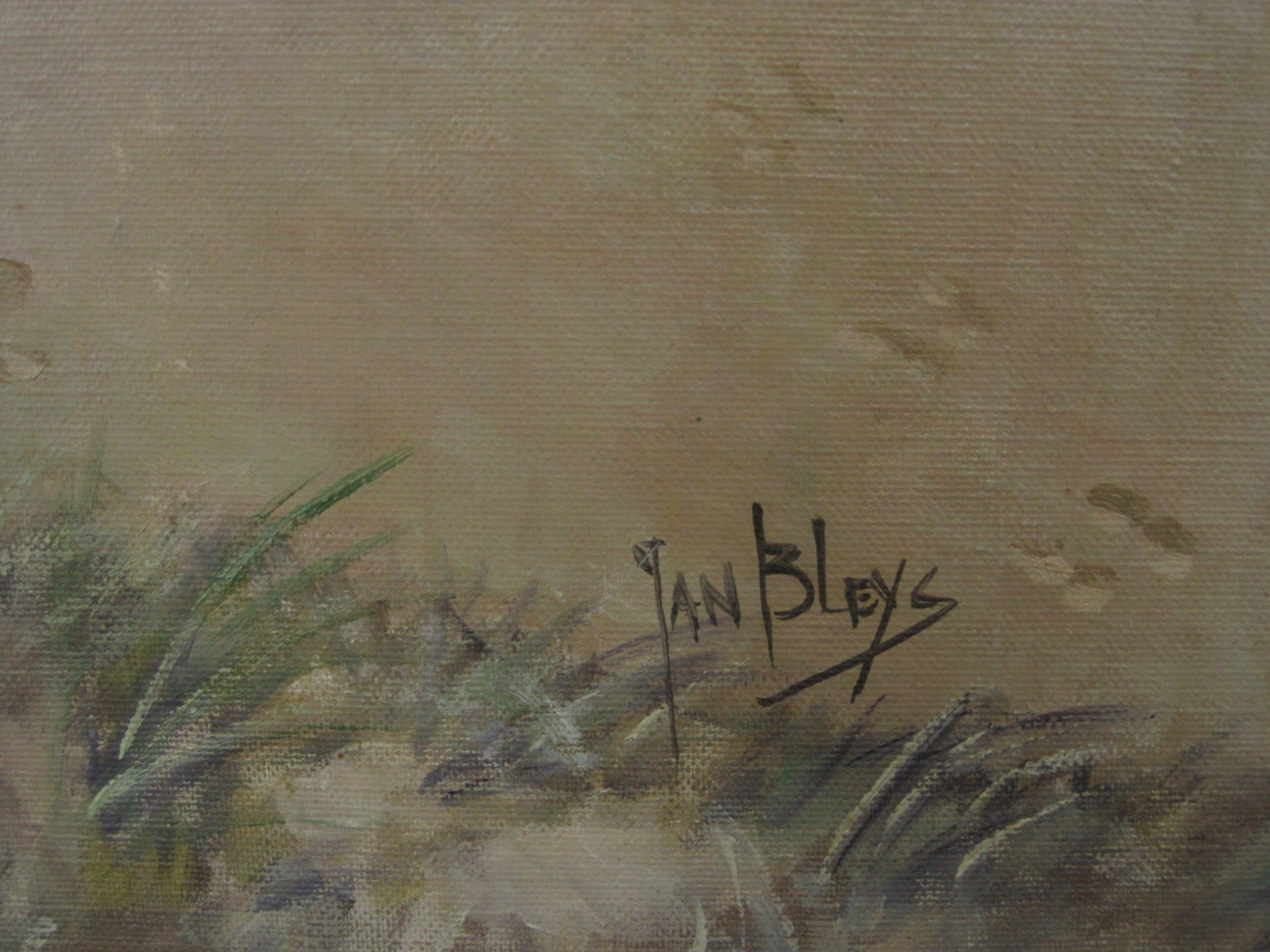 """Jan Bleijs - GROOT en sfeervol impressionistisch olieverf """"Kust en Duinlandschap"""" gesigneerd kopen? Bied vanaf 10!"""