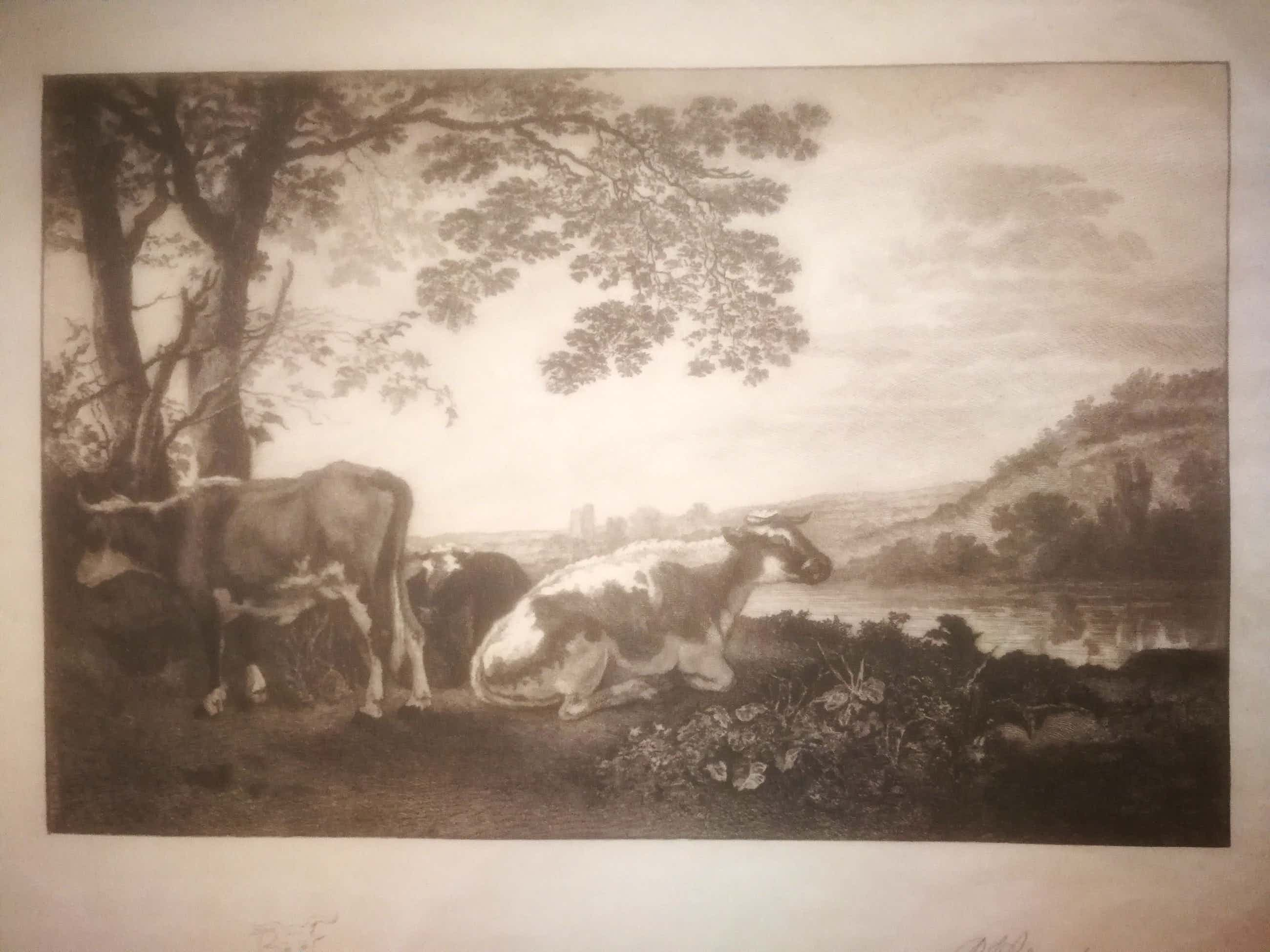 Petrus Johannes Arendzen - Koeien in de wei. kopen? Bied vanaf 3!