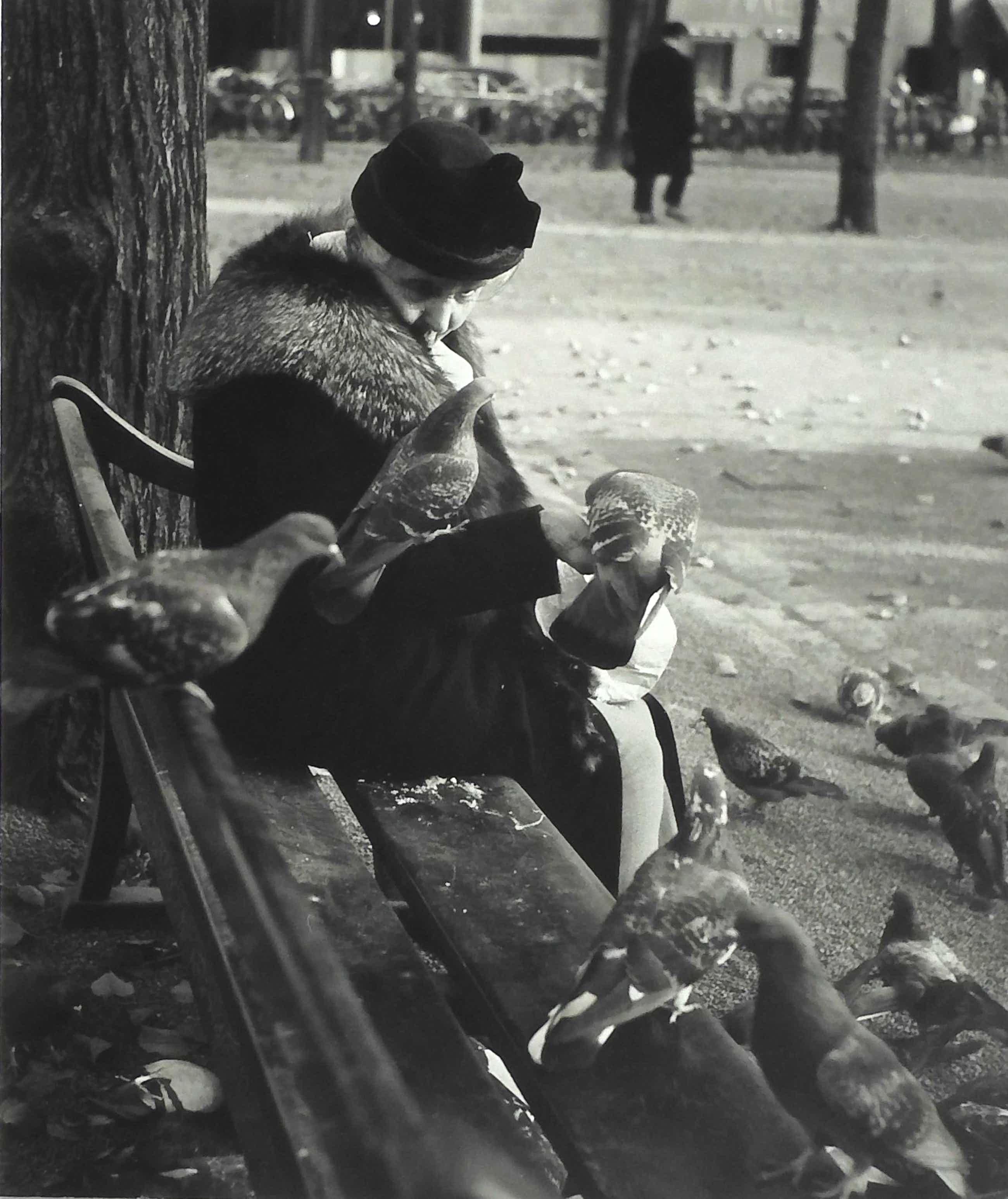 Dirk de Herder - Oude vrouw met duiven kopen? Bied vanaf 249!