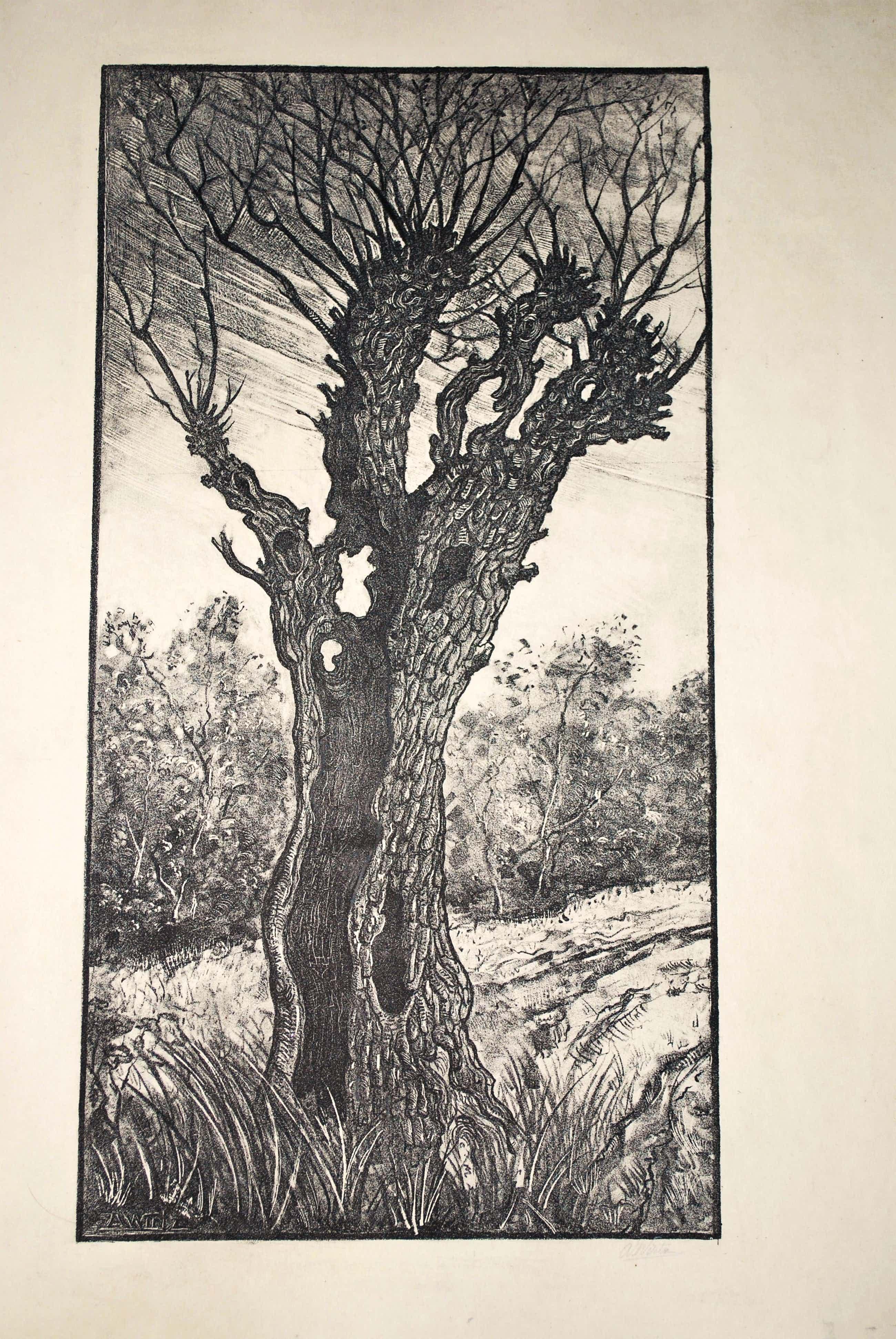 Anton Wirtz - Litho holle boom en Litho landschap - voorkant en achterkant van 1 groot blad kopen? Bied vanaf 35!