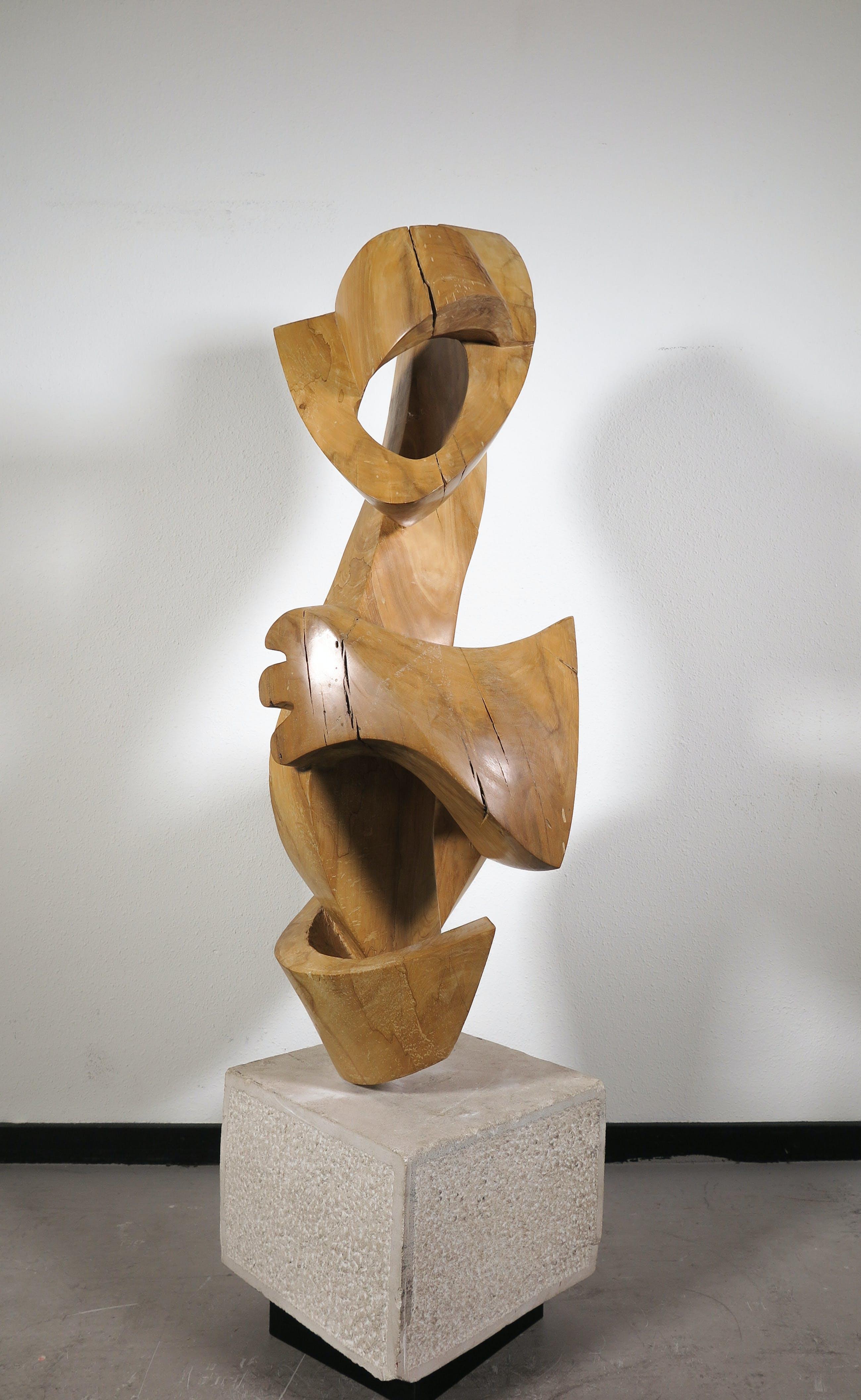Niet of onleesbaar gesigneerd - Groot organisch gevormd houten sculptuur (Zwaar!) kopen? Bied vanaf 1!