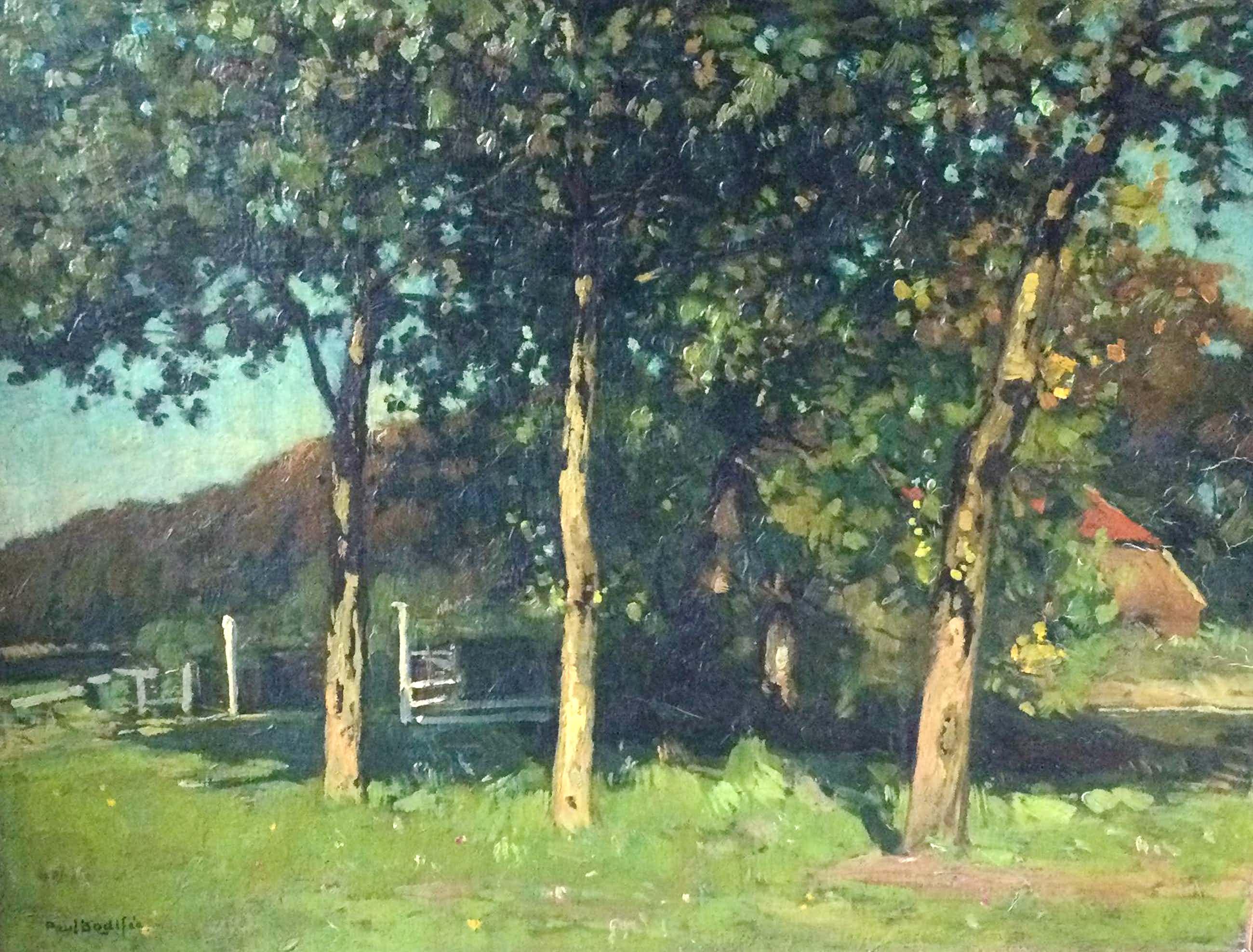 Paul Bodifee - 9007-6, Boerderij achter de bomen kopen? Bied vanaf 650!