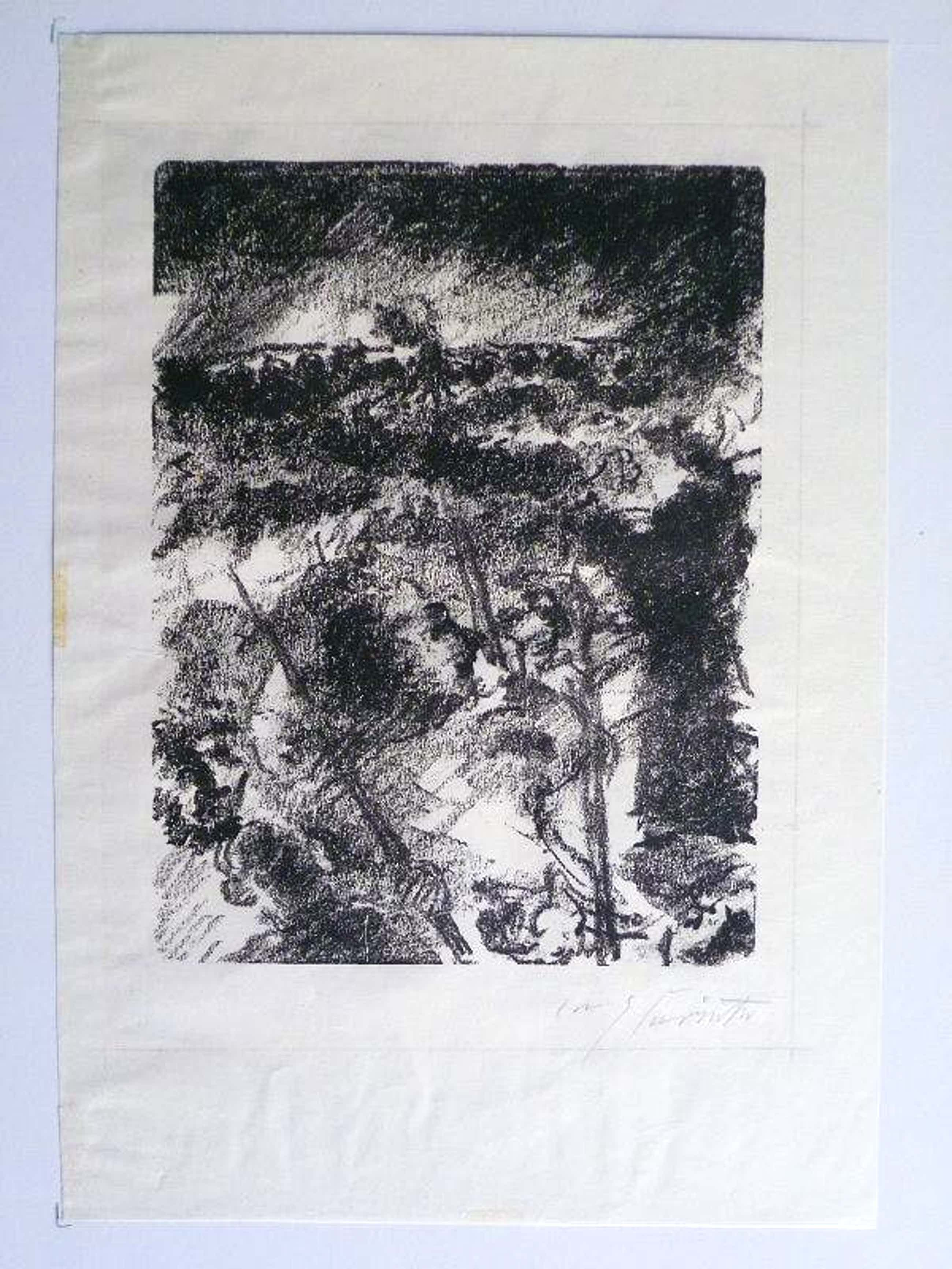 Lovis Corinth - Mizpas Opfer signierte Lithographie 1923 kopen? Bied vanaf 110!