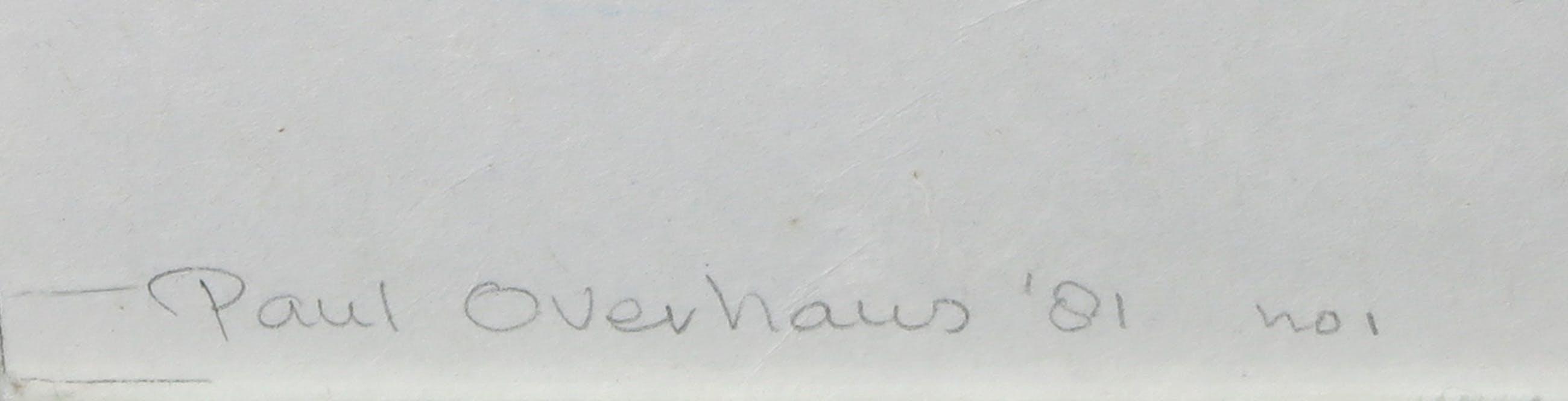 Paul Overhaus - Houtsnede op Japans papier, Vogels in vlucht - Ingelijst (Zeer groot en zwaar) kopen? Bied vanaf 1!