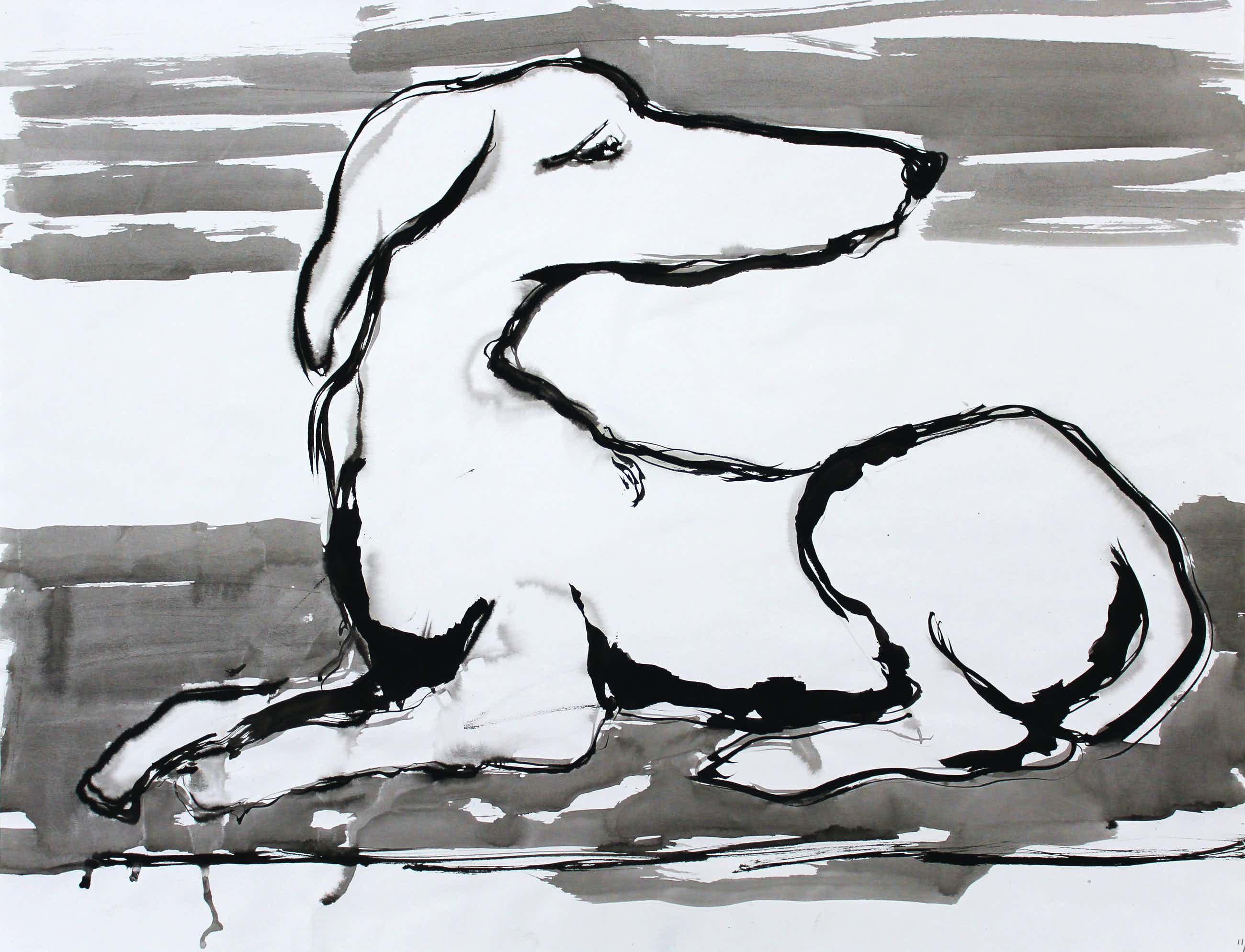 Ad van Riel - Hond(2) kopen? Bied vanaf 35!