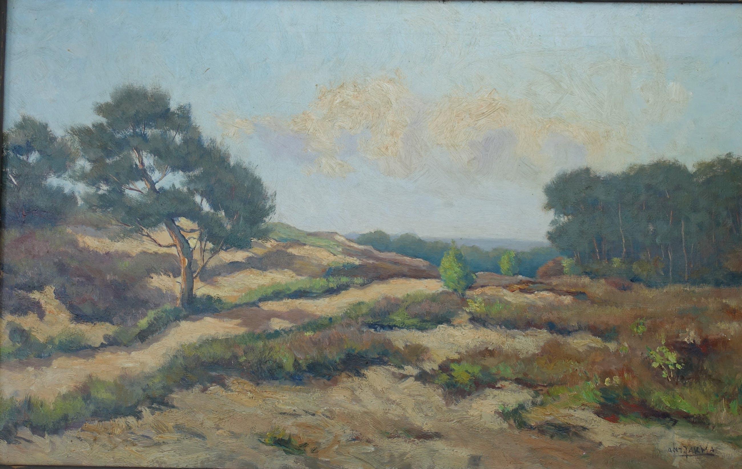 Anton Jakma - zeer fraai landschap kopen? Bied vanaf 50!